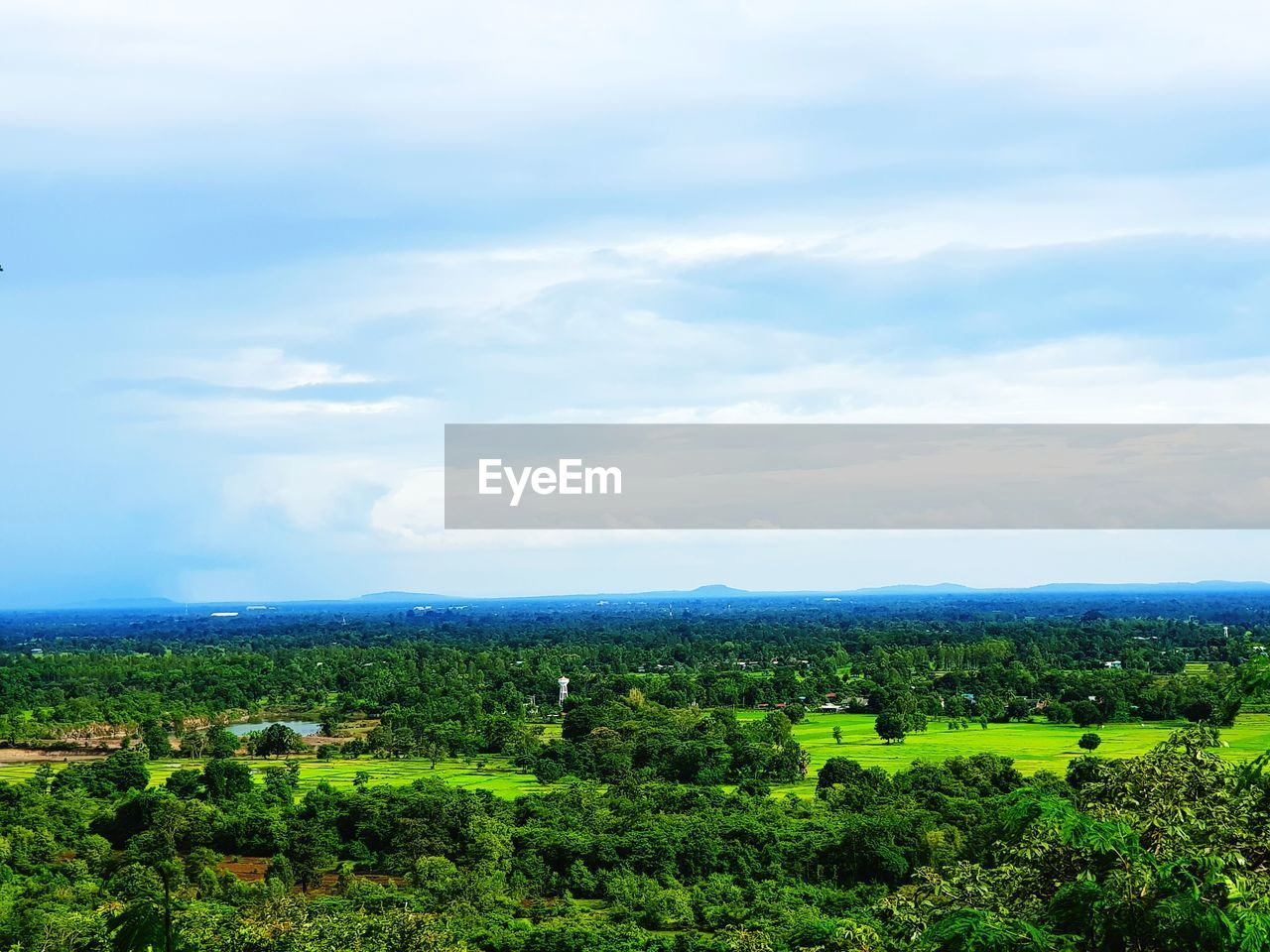 landscape, environment, plant, beauty in nature, cloud - sky, scenics - nature, sky, tree, nature, green color, tranquil scene, growth, tranquility, day, field, land, no people, rural scene, non-urban scene, agriculture, outdoors, winemaking