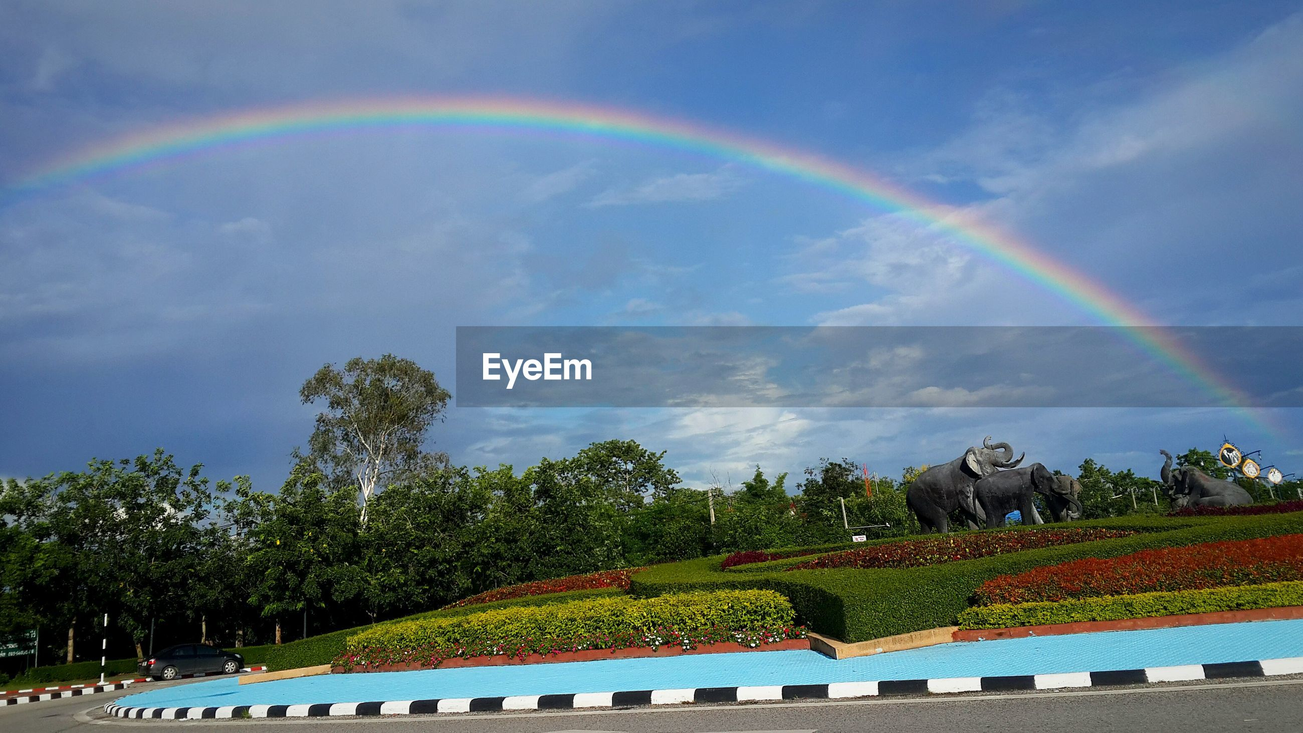 tree, sky, cloud - sky, built structure, rainbow, multi colored, park - man made space, cloud, nature, architecture, incidental people, beauty in nature, building exterior, cloudy, scenics, growth, green color, tranquility, large group of people, outdoors