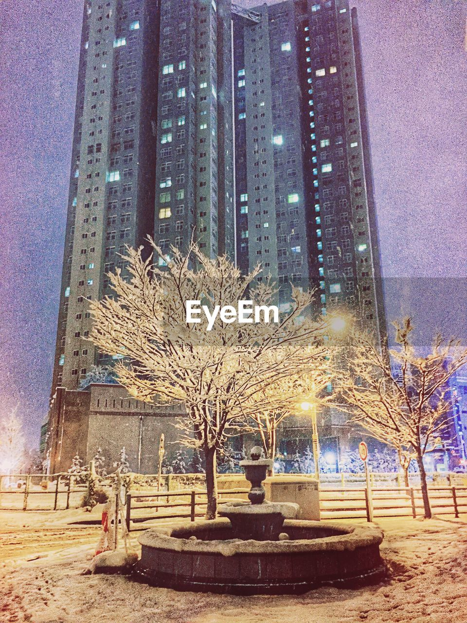 architecture, built structure, building exterior, outdoors, tree, clear sky, travel destinations, no people, illuminated, night, snow, winter, city, bare tree, cold temperature, sky