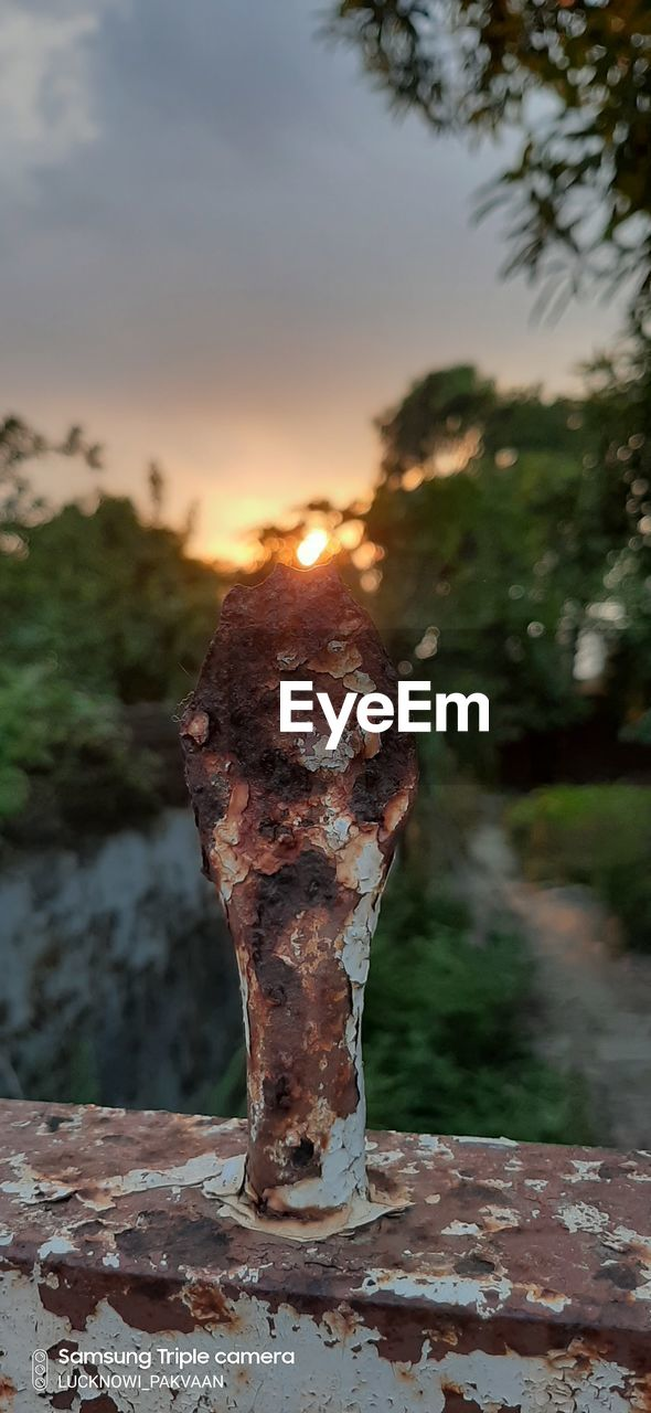 focus on foreground, sunset, metal, nature, sky, close-up, rusty, tree, no people, outdoors, day, plant, sunlight, old, orange color, weathered, land, selective focus, tranquility, growth