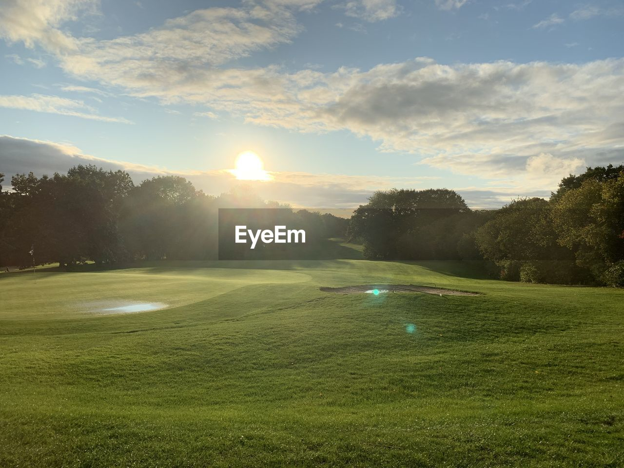 plant, grass, sky, tree, green color, beauty in nature, scenics - nature, tranquil scene, cloud - sky, sun, sunlight, tranquility, lens flare, no people, nature, landscape, land, day, environment, golf, outdoors, green - golf course