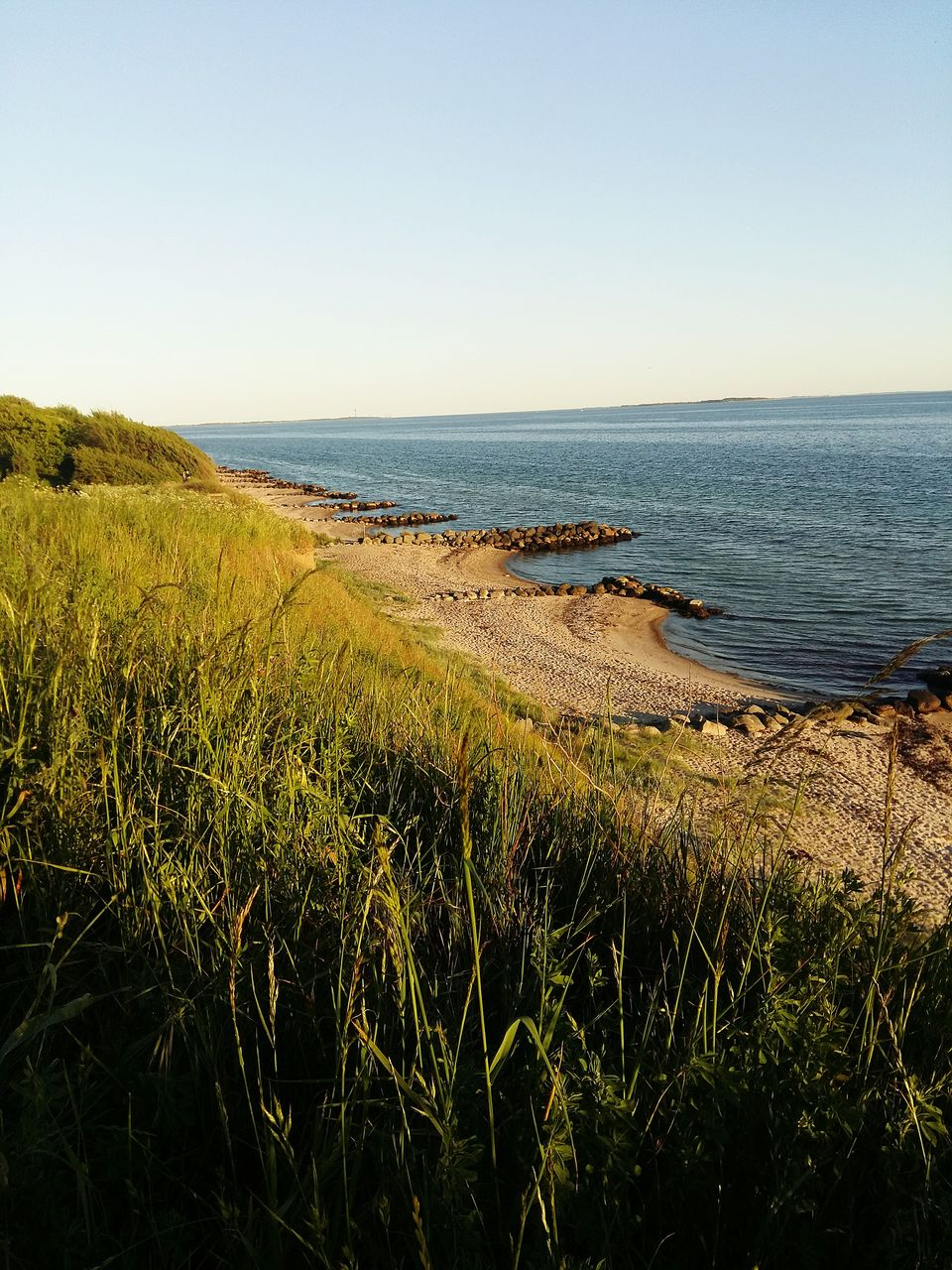 sea, nature, water, tranquil scene, scenics, tranquility, beauty in nature, clear sky, horizon over water, grass, outdoors, landscape, growth, no people, day, beach, sky