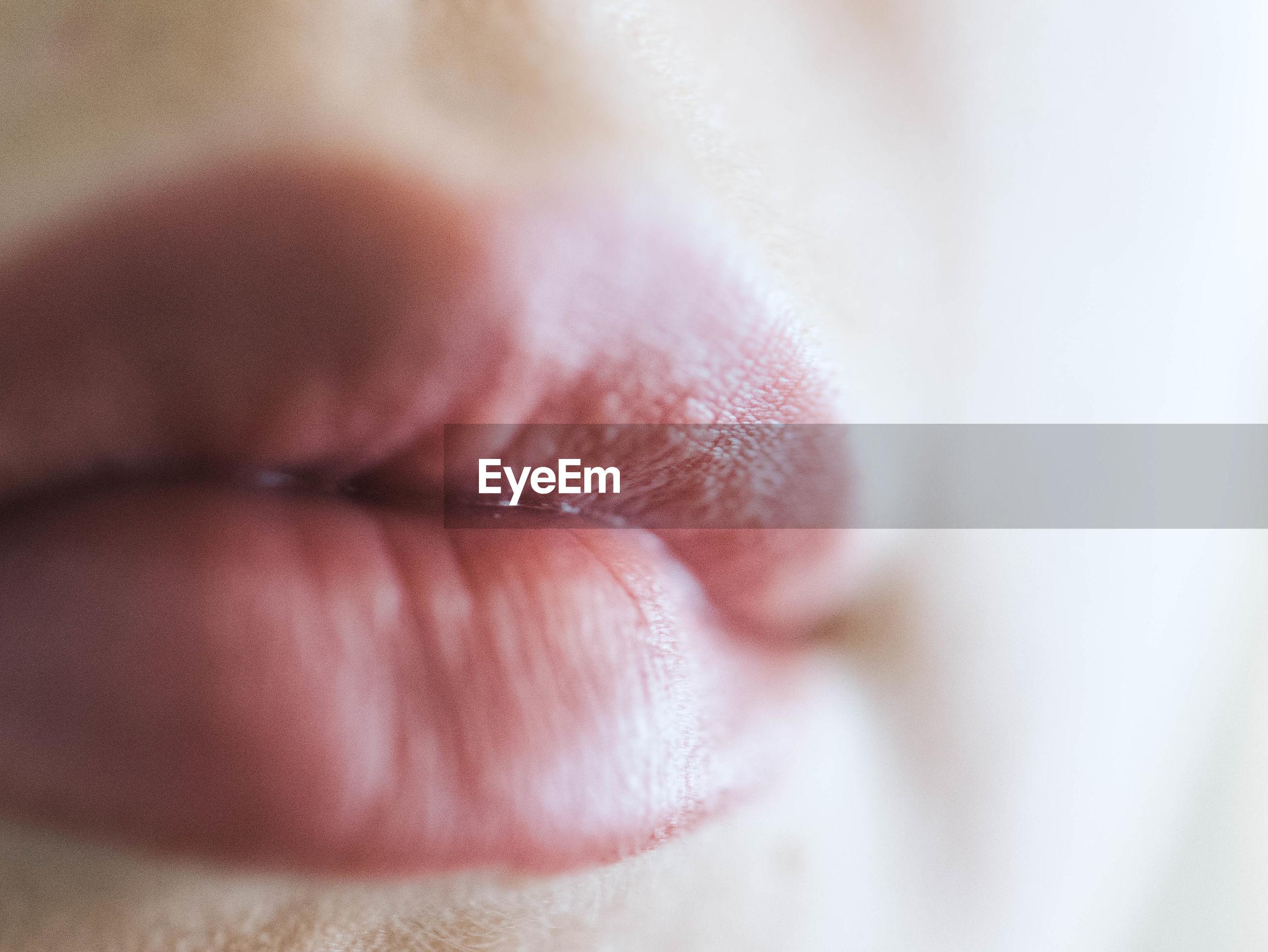 Macro shot of young woman lips