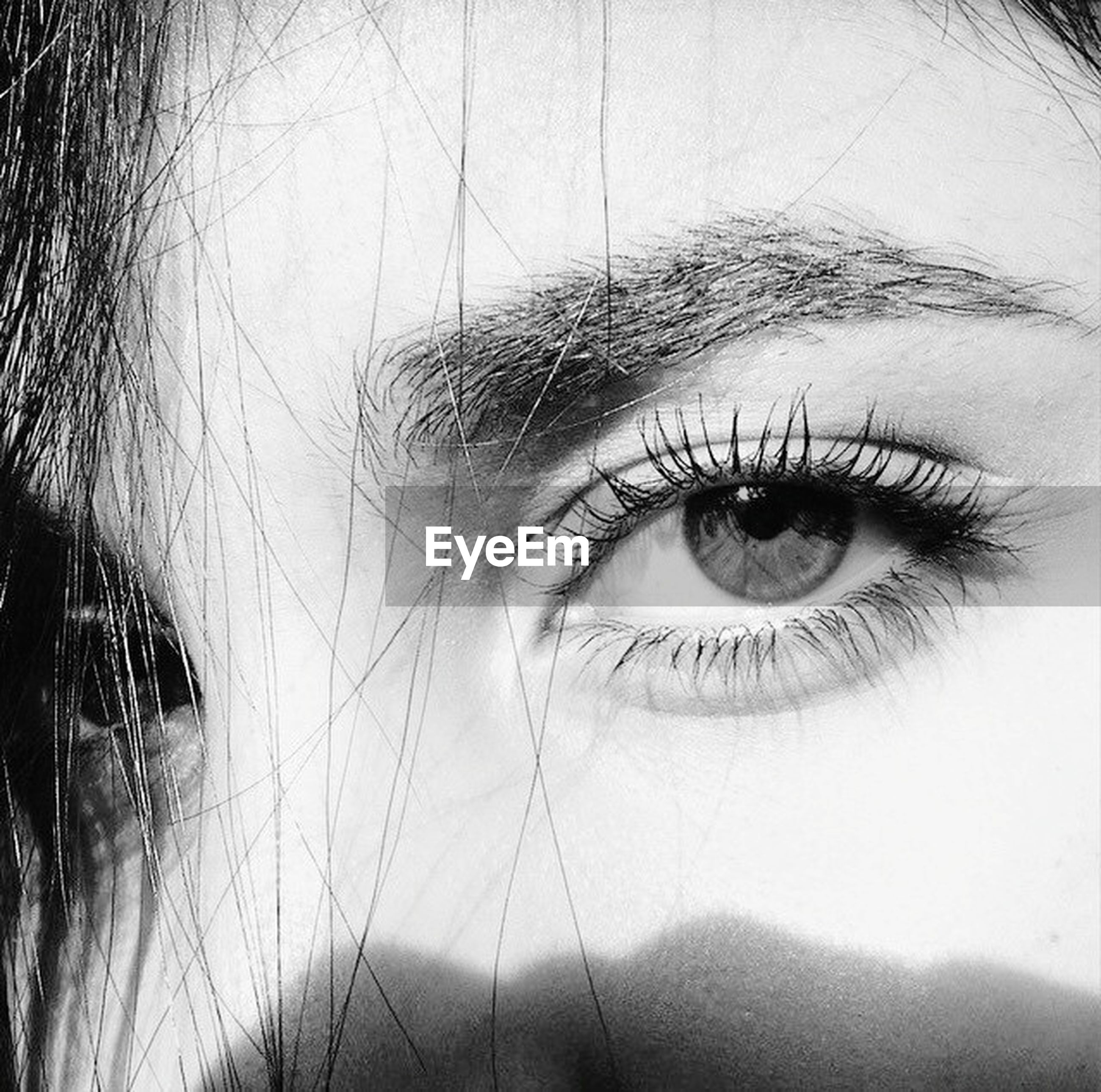 human eye, looking at camera, close-up, portrait, headshot, human face, eyelash, lifestyles, young adult, person, eyesight, indoors, young women, sensory perception, human skin, front view, eyebrow