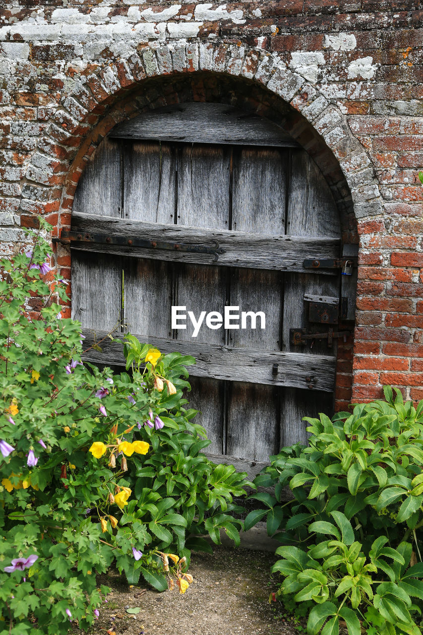 architecture, built structure, arch, building exterior, wall, plant, no people, day, entrance, growth, door, leaf, brick wall, wood - material, brick, plant part, nature, wall - building feature, closed, outdoors