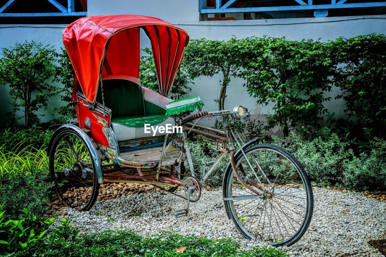 mode of transportation, transportation, land vehicle, plant, tree, day, nature, stationary, growth, no people, bicycle, green color, red, outdoors, absence, built structure, architecture, building exterior, land, parking, wheel