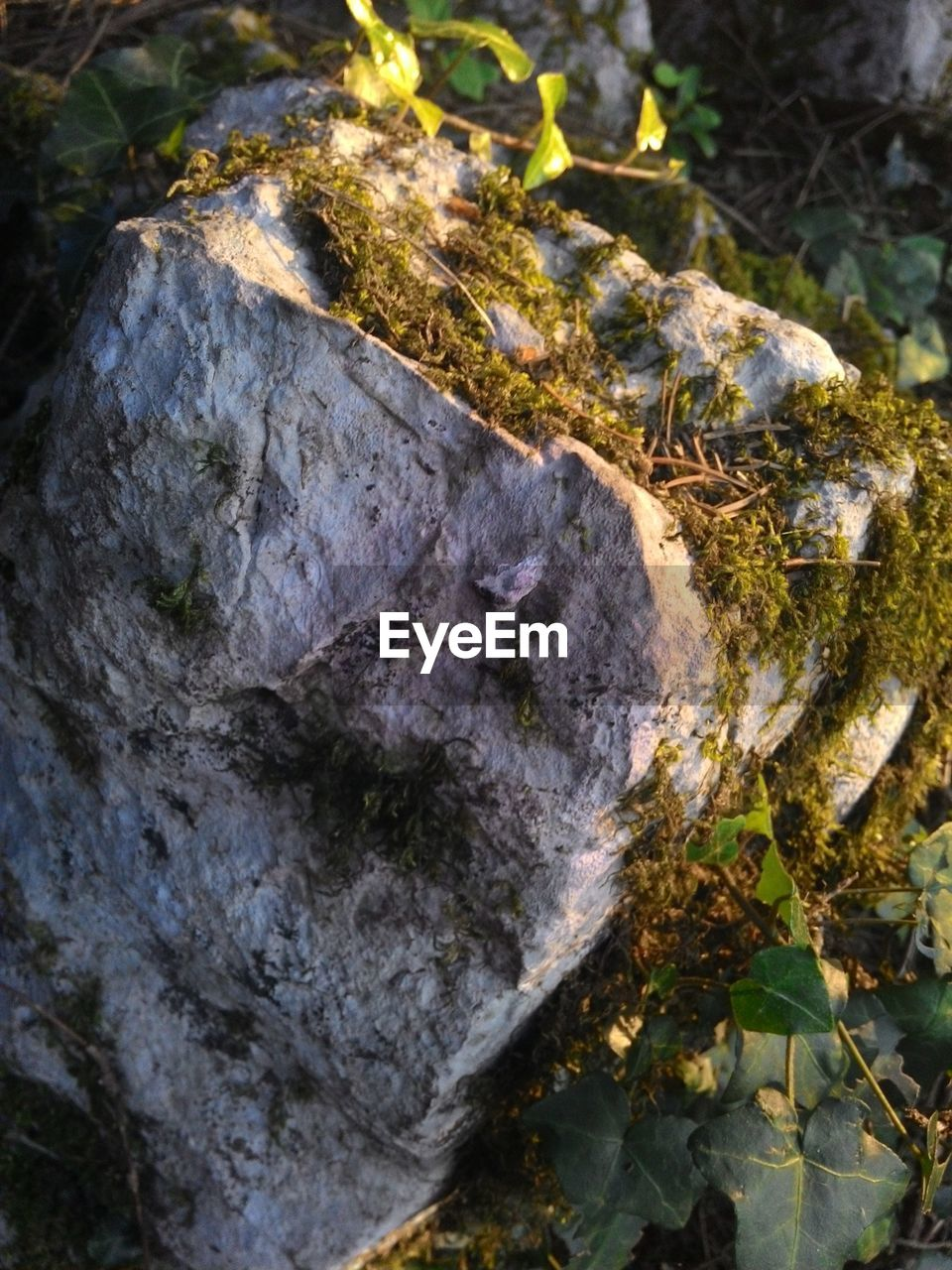 rock - object, nature, no people, outdoors, adventure, day, beauty in nature, close-up