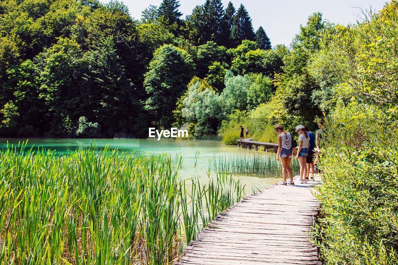 tree, rear view, growth, nature, walking, beauty in nature, two people, outdoors, real people, day, men, green color, lake, full length, scenics, togetherness, tranquil scene, tranquility, leisure activity, women, water, standing, lifestyles, grass, sky, mammal, adult, people