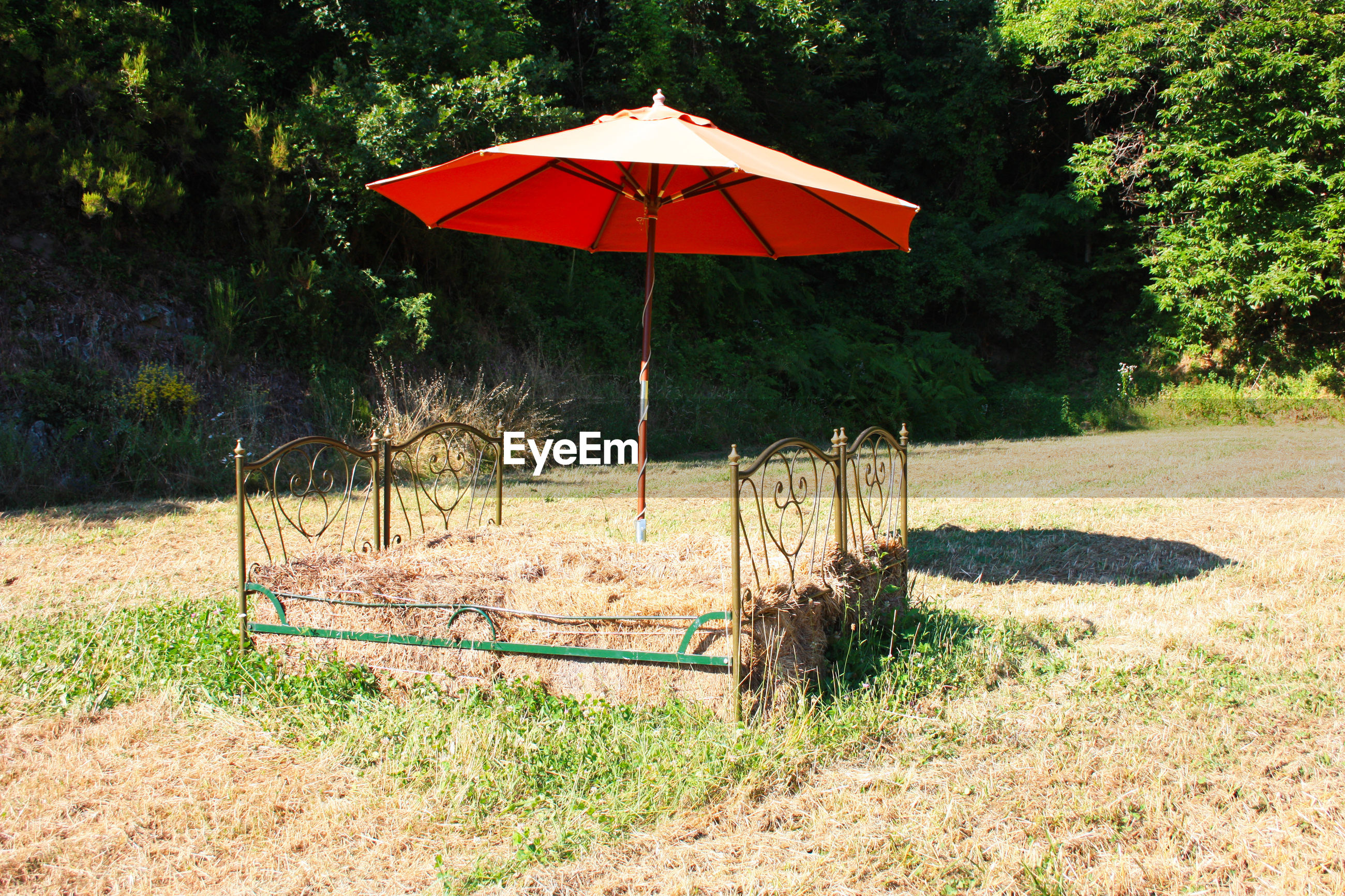 Naturalistic fake straw bed with iron headboard under an orange umbrella in a tuscan clearing