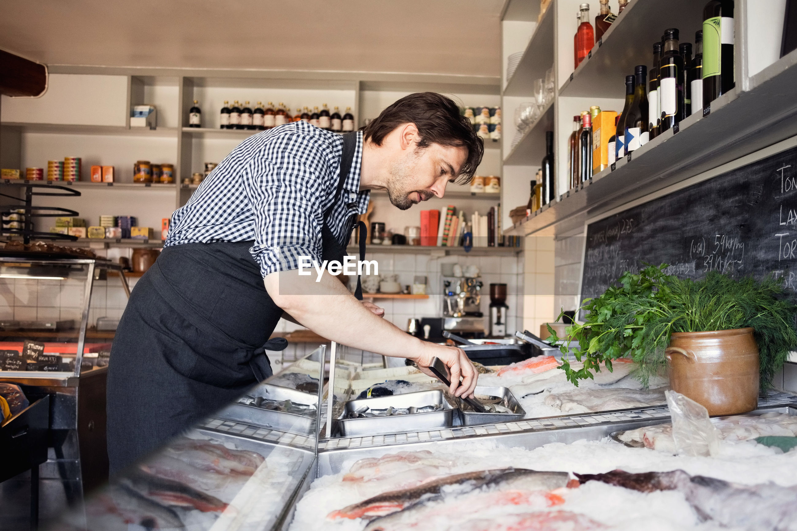 Side view of owner looking at fishes in store