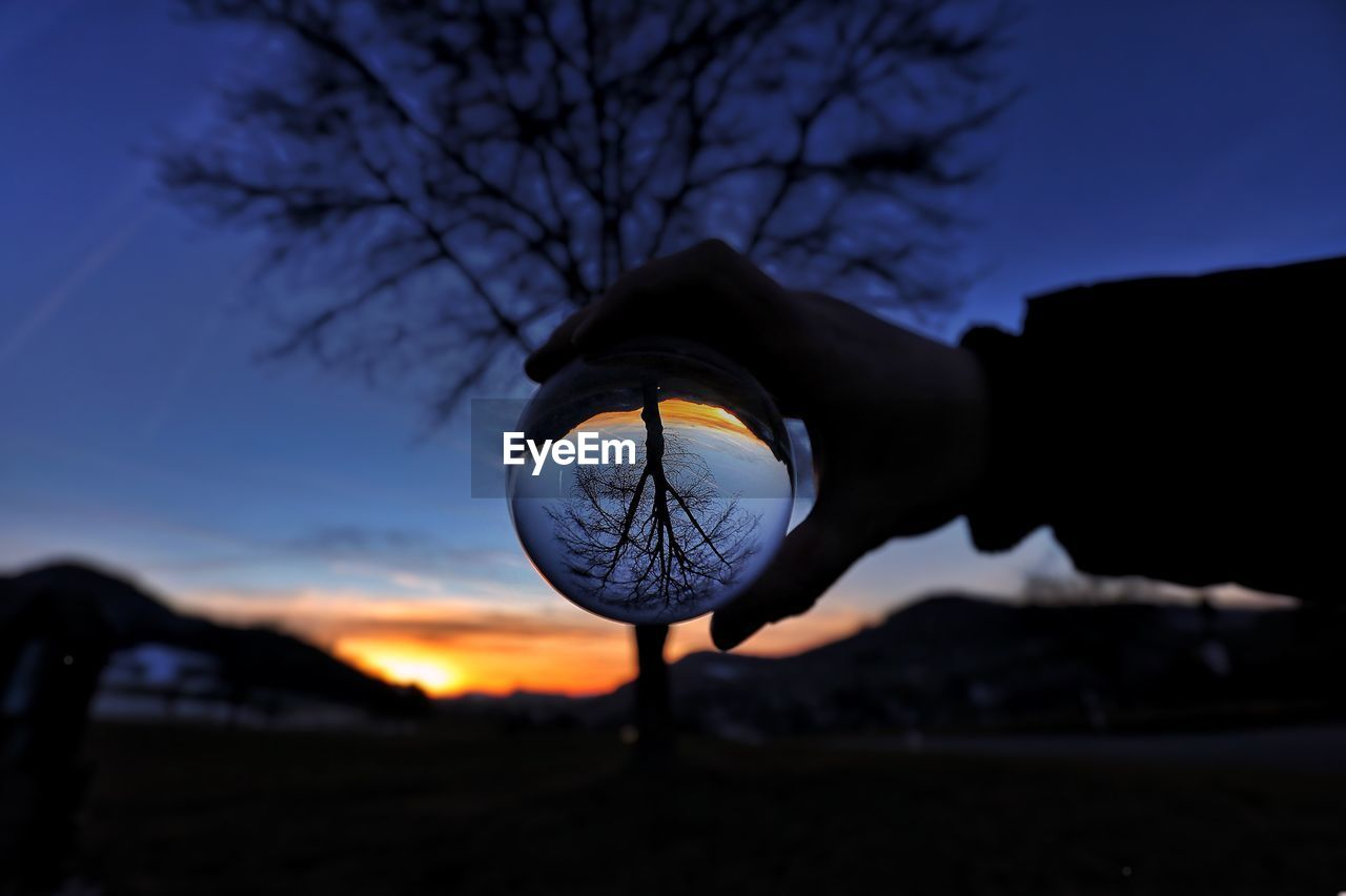sky, one person, tree, focus on foreground, nature, sunset, human body part, holding, human hand, real people, bare tree, silhouette, hand, plant, body part, lighting equipment, outdoors, men, close-up, illuminated, finger