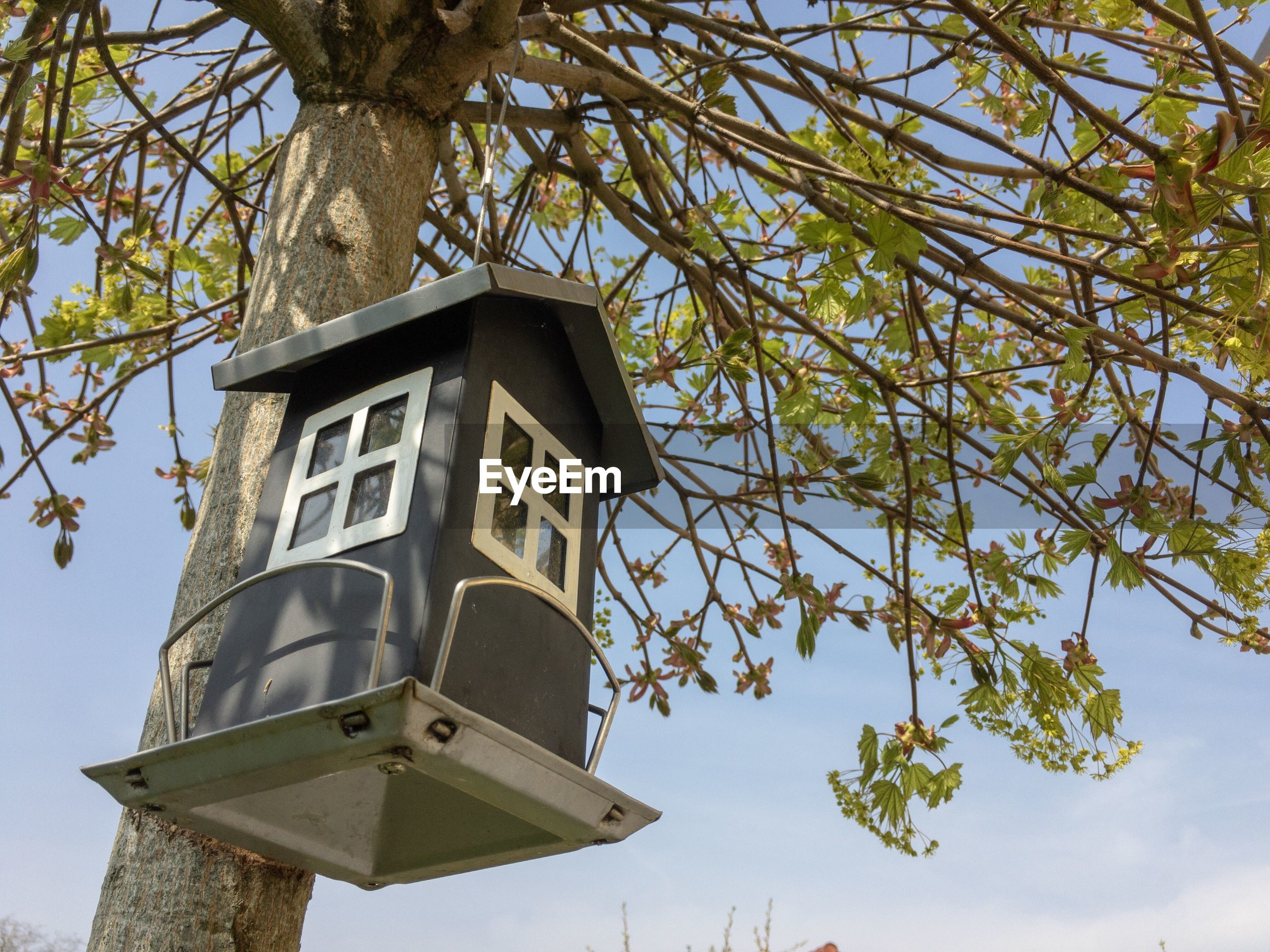 LOW ANGLE VIEW OF BIRDHOUSE HANGING AGAINST TREE