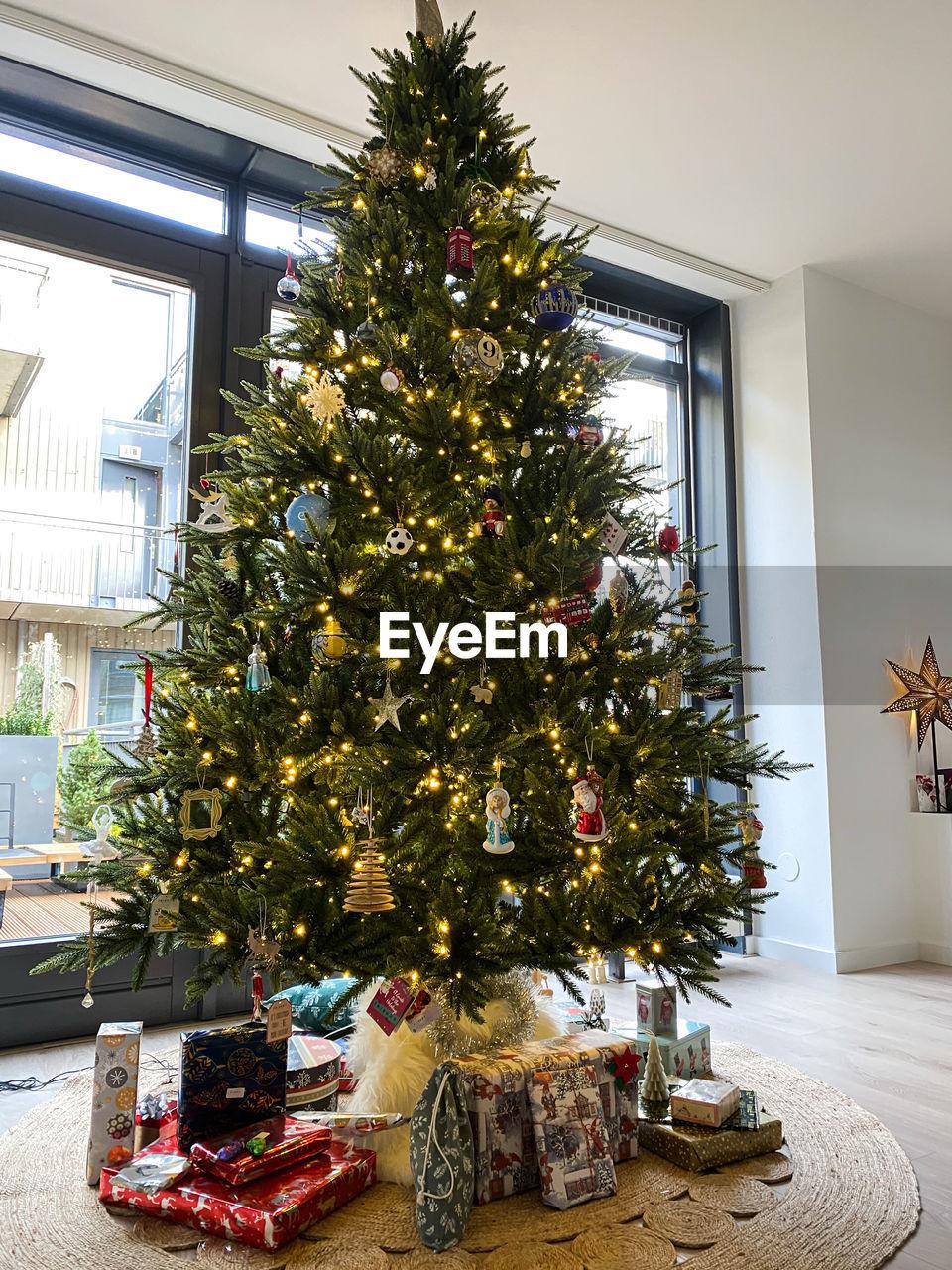 Christmas tree at home