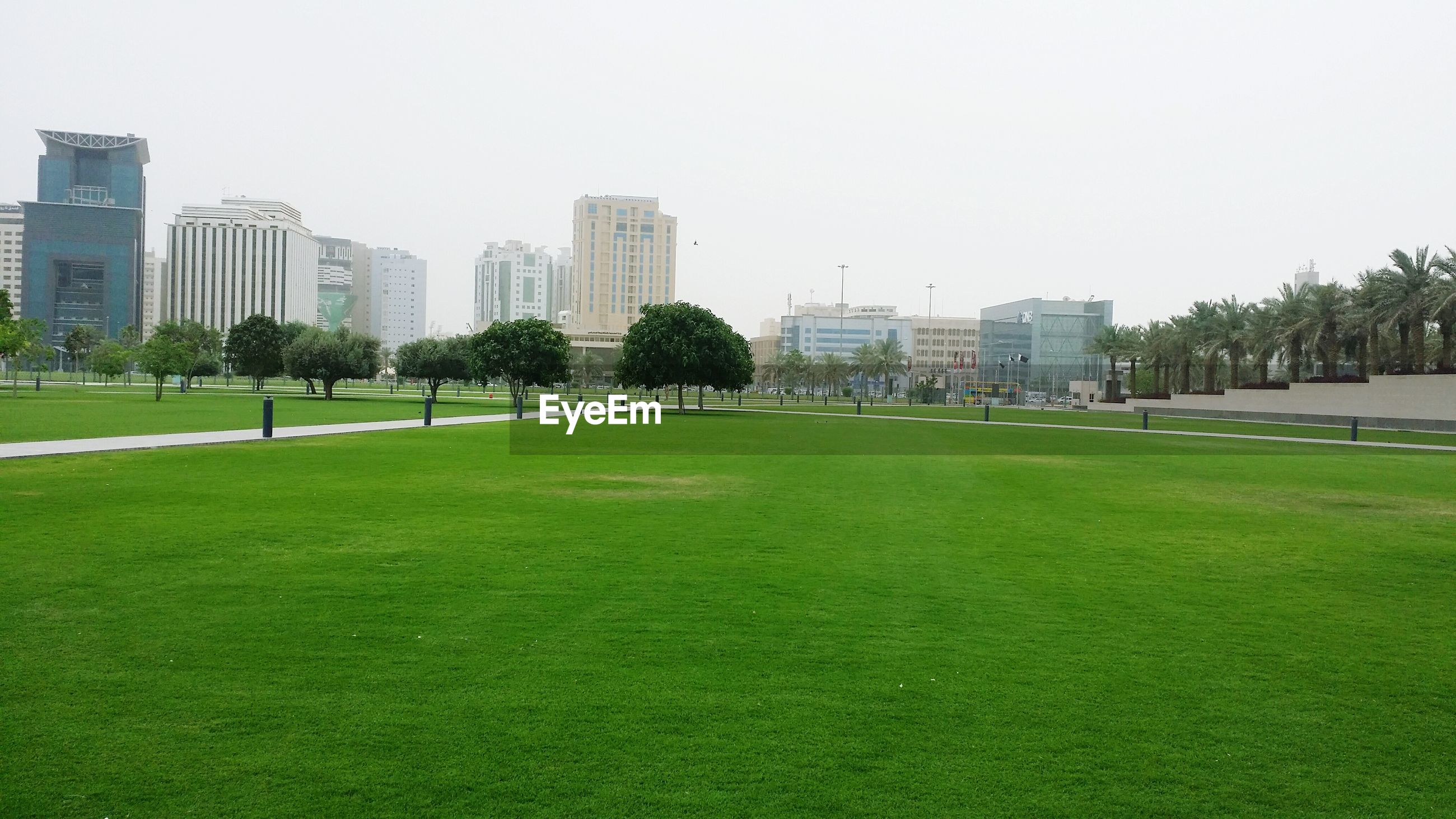 View of buildings in distance with grassland in foreground