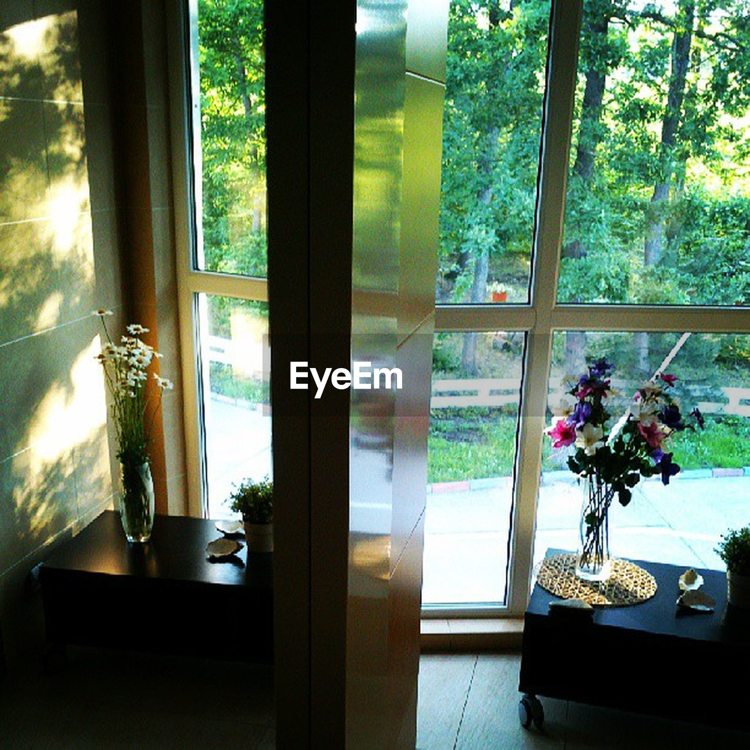 indoors, window, glass - material, transparent, table, tree, home interior, vase, potted plant, curtain, window sill, growth, flower, sunlight, plant, chair, glass, house, day, no people