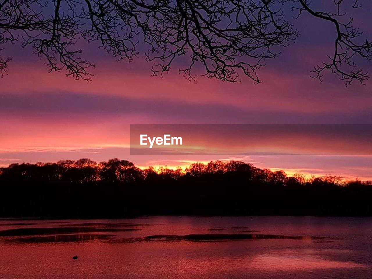 tree, sunset, beauty in nature, nature, scenics, lake, tranquility, no people, reflection, tranquil scene, outdoors, water, sky, day, astrology sign