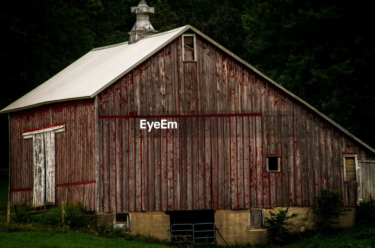 architecture, built structure, building exterior, plant, tree, building, house, no people, nature, day, wood - material, land, outdoors, agricultural building, barn, cottage, old, residential district, growth, sky