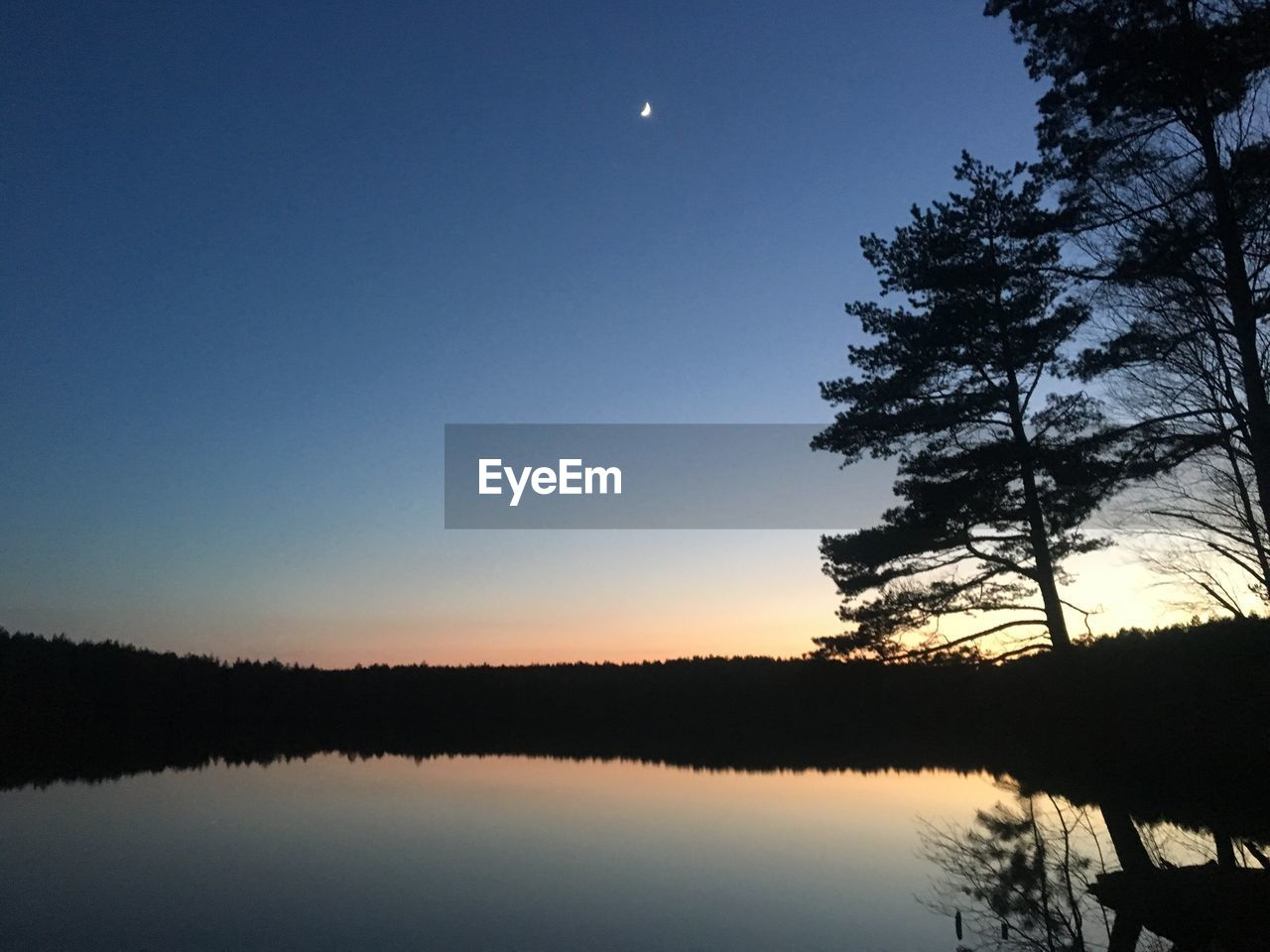 moon, nature, beauty in nature, tree, tranquil scene, tranquility, scenics, sky, reflection, idyllic, silhouette, no people, outdoors, clear sky, lake, sunset, water, night, half moon, astronomy