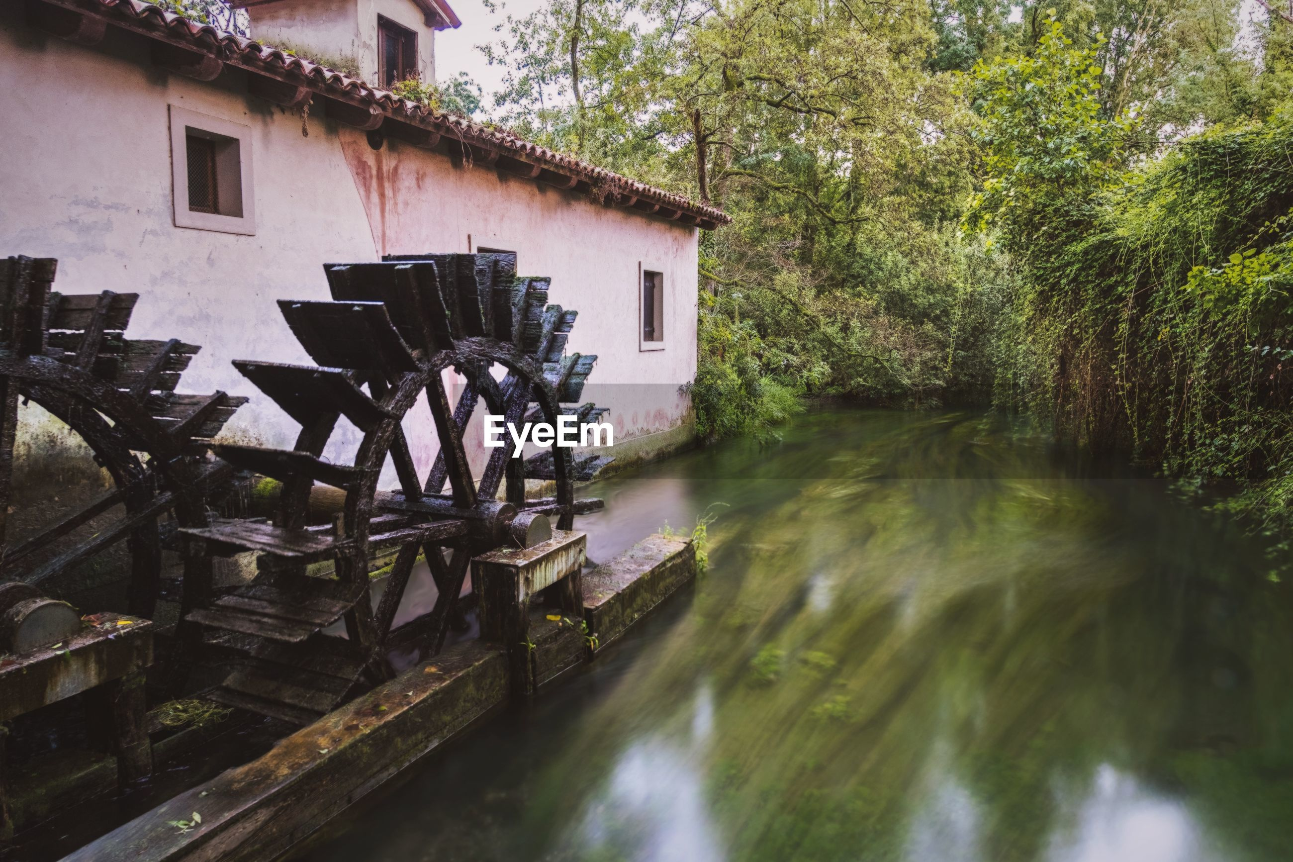 Watermill by river in forest