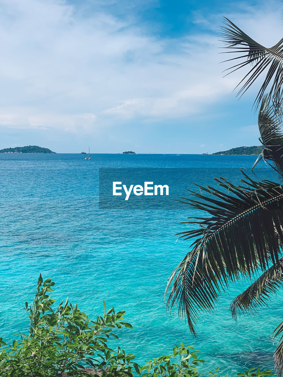 water, sea, sky, beauty in nature, scenics - nature, palm tree, tropical climate, tranquility, tranquil scene, tree, cloud - sky, plant, nature, horizon over water, no people, beach, land, horizon, day, outdoors, palm leaf, coconut palm tree, turquoise colored