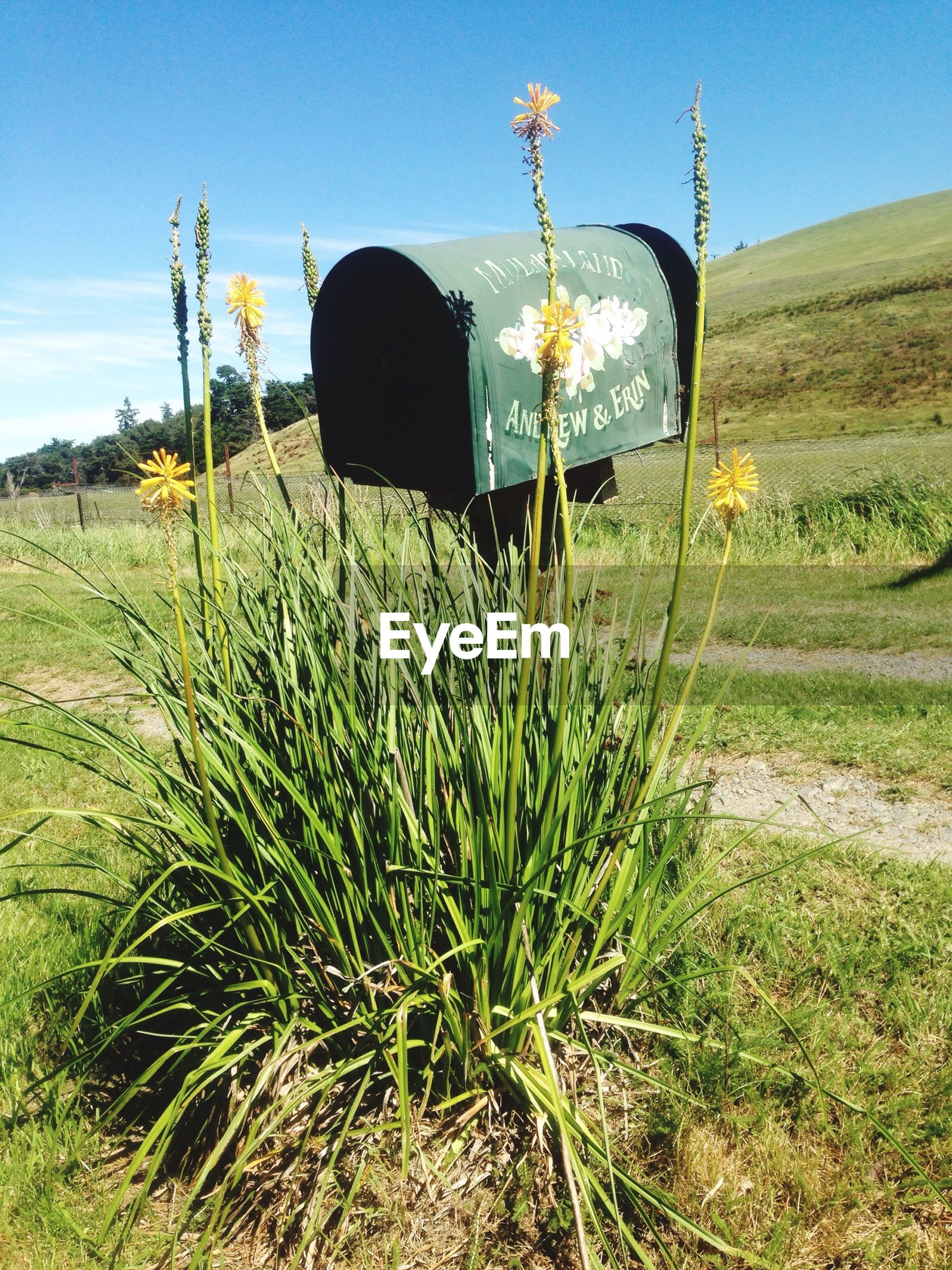 Mailbox Over Grass On Field