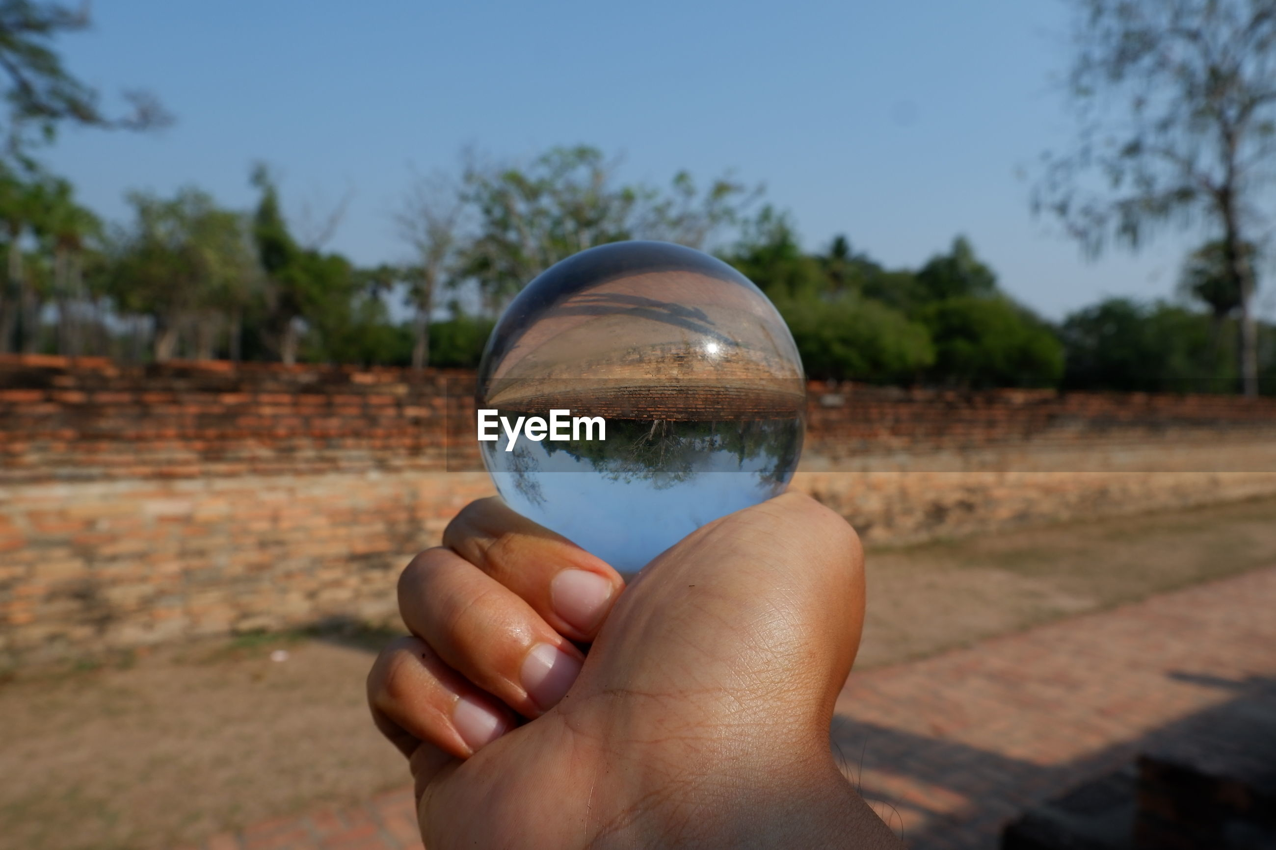 Cropped hand holding crystal ball over land against clear sky
