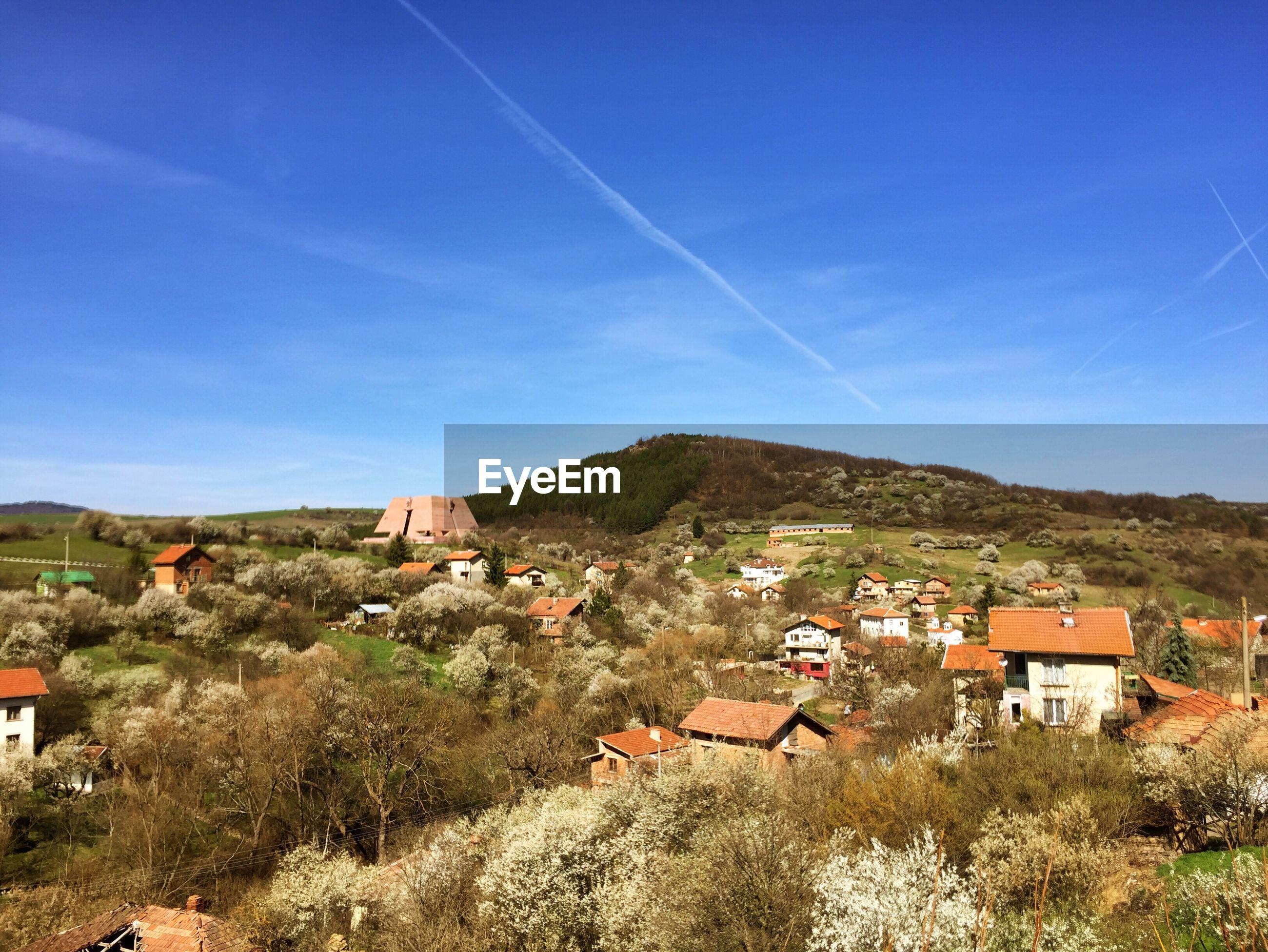 Houses amidst trees on field against sky
