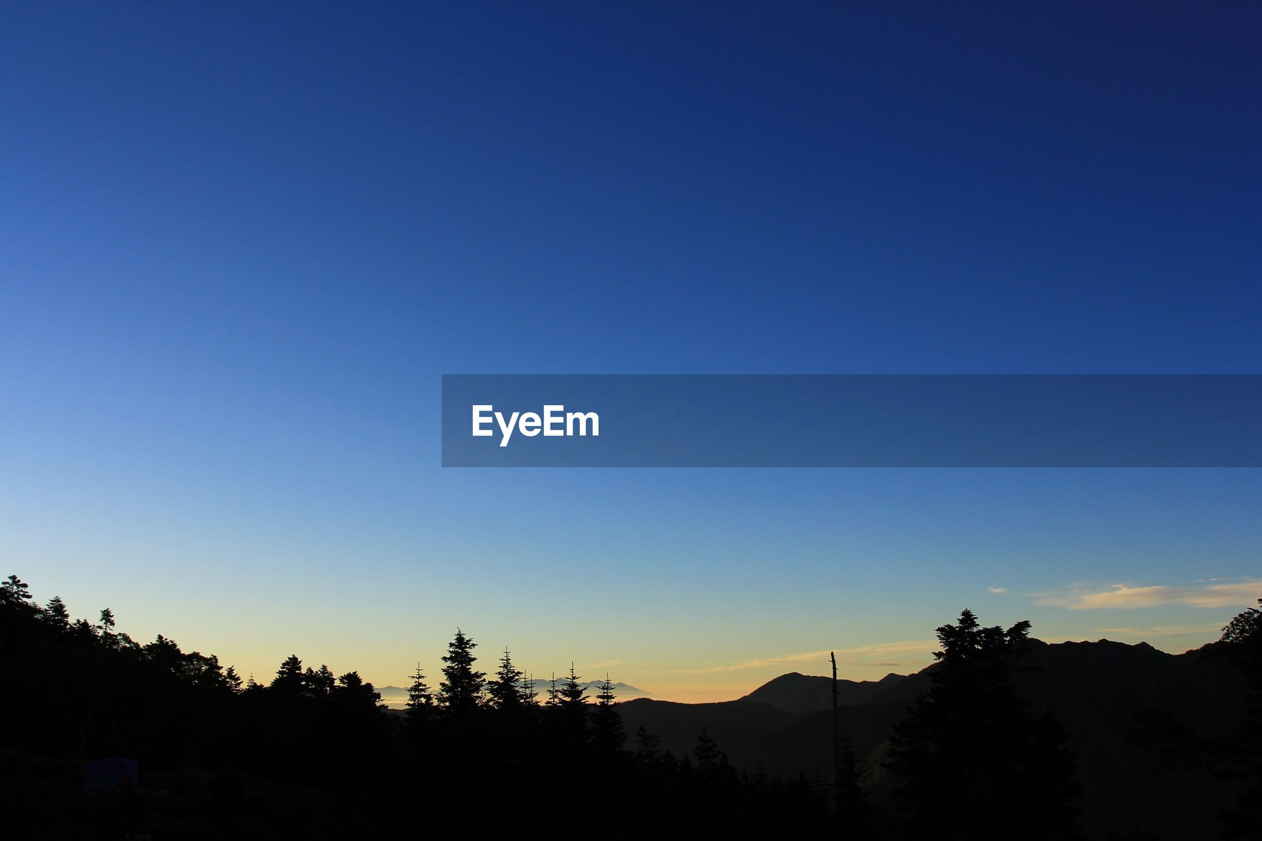 Silhouette trees on mountains against clear blue sky
