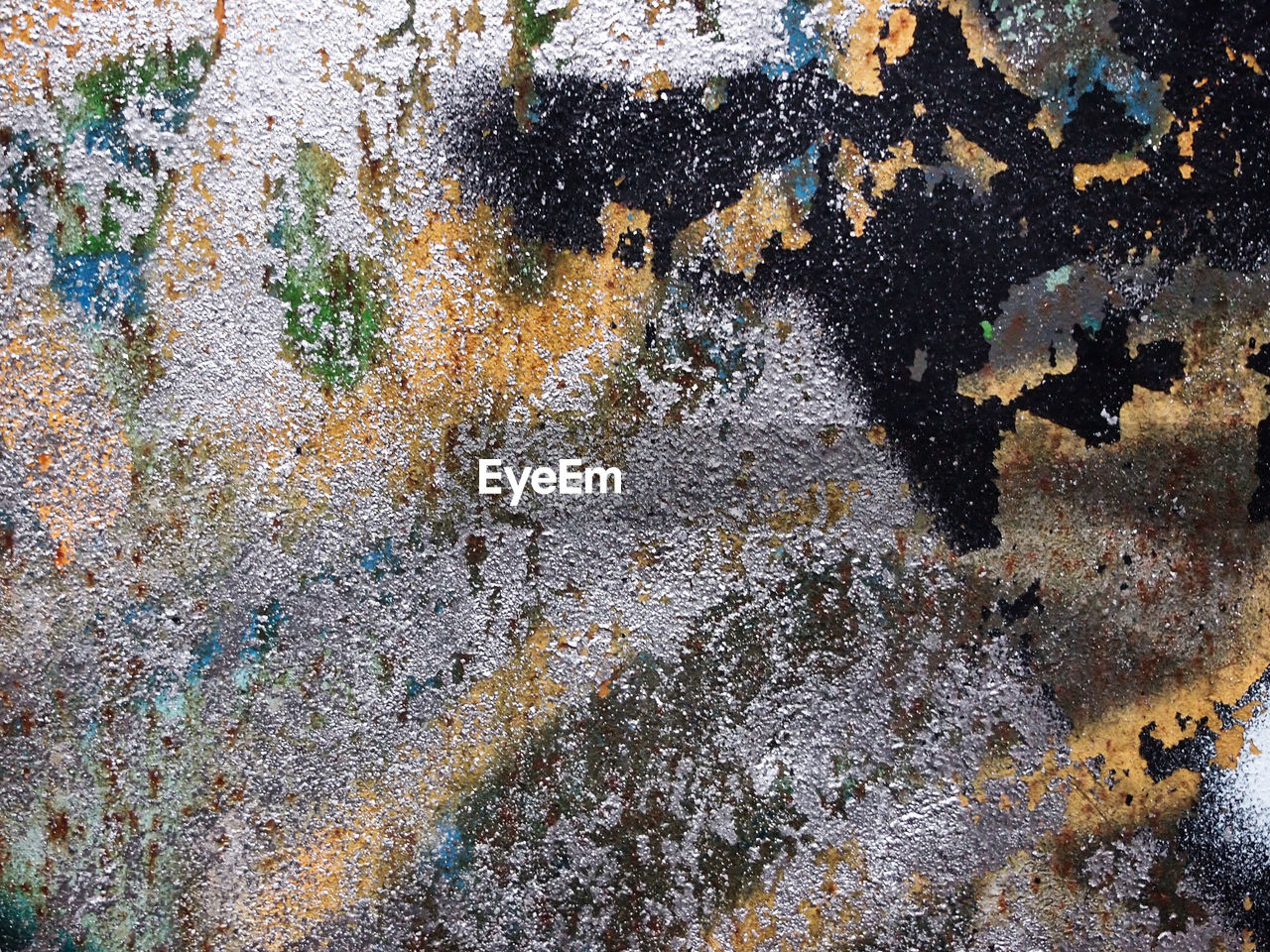 full frame, abstract, backgrounds, textured, rough, close-up, multi colored, no people, lichen, day, outdoors, nature