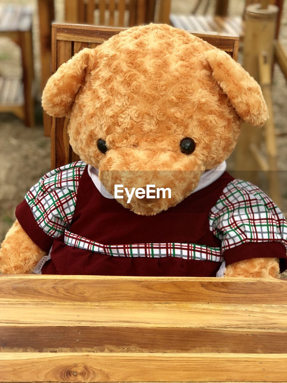 indoors, animal representation, stuffed toy, mammal, teddy bear, close-up, no people, toy, representation, table, animal themes, brown, animal, focus on foreground, checked pattern, still life, domestic animals, art and craft, wood - material, softness