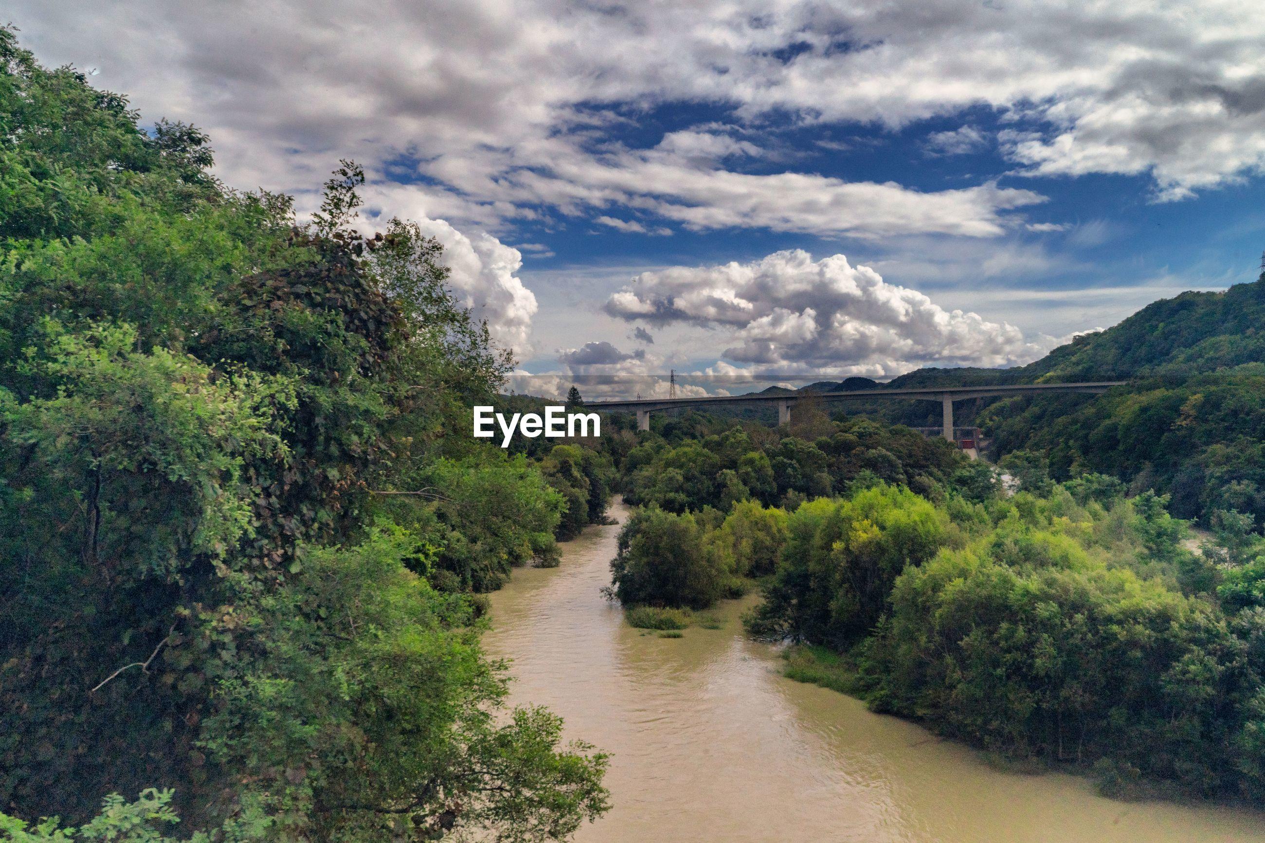 RIVER AMIDST GREEN LANDSCAPE AGAINST SKY