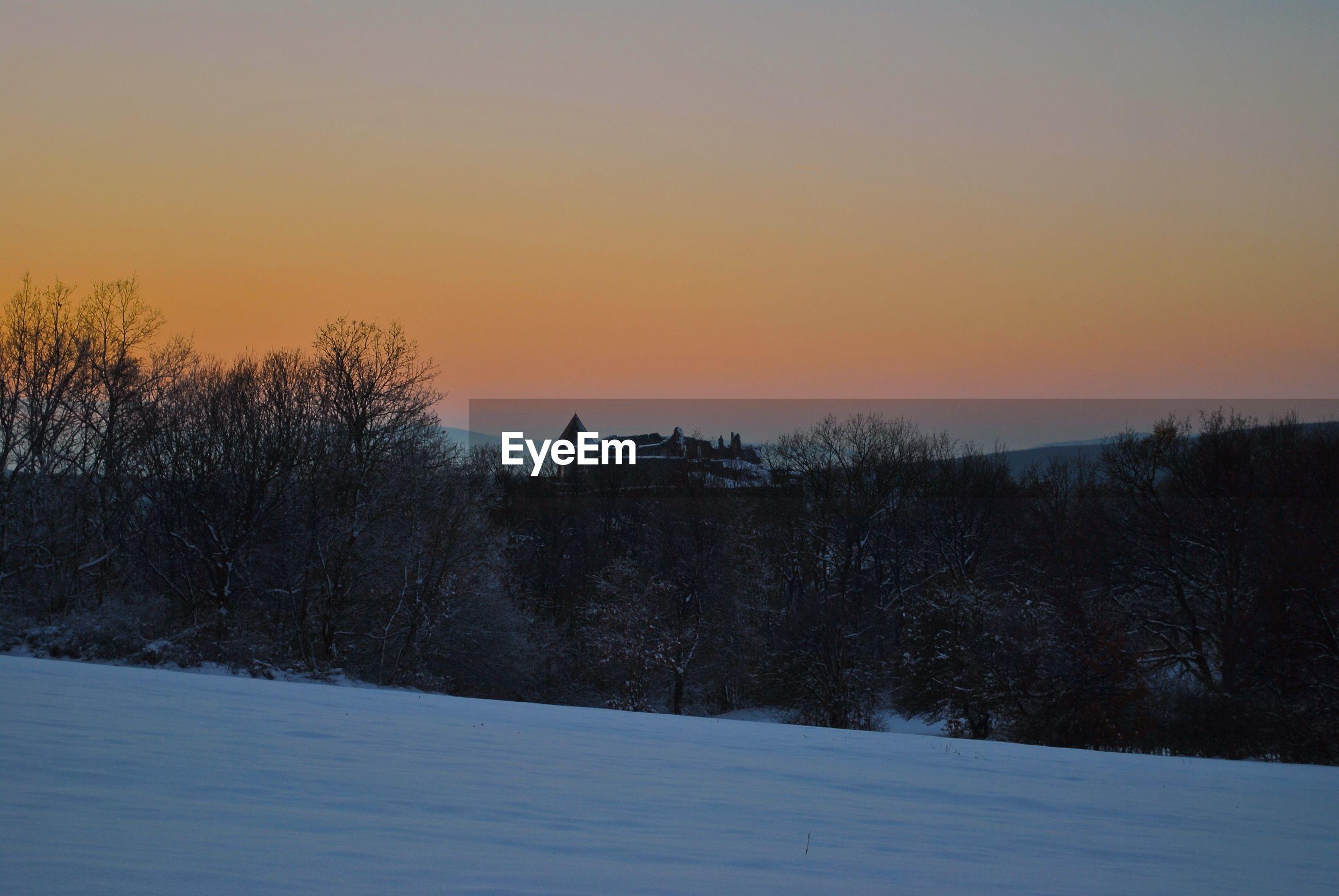BARE TREES ON SNOW LANDSCAPE AGAINST SKY