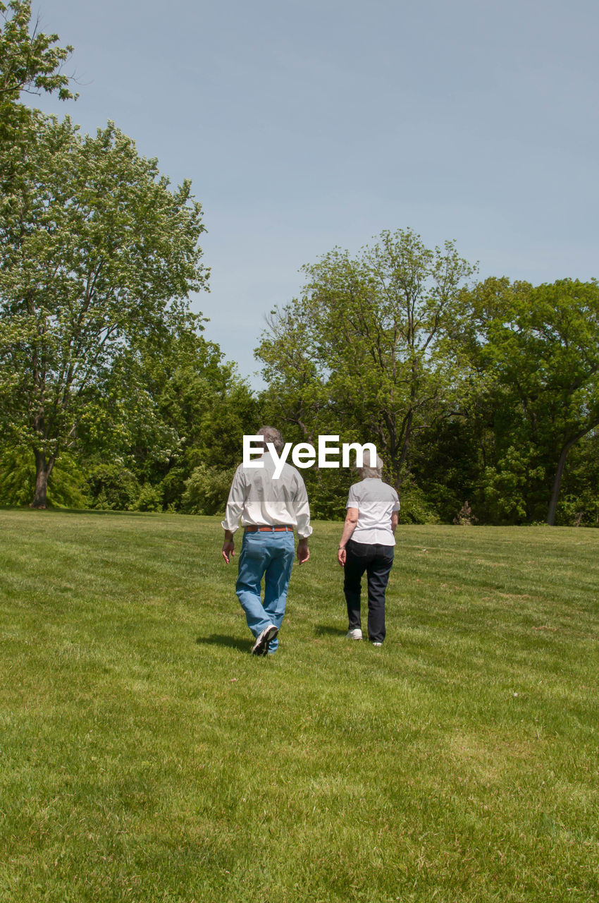 two people, togetherness, rear view, tree, grass, casual clothing, growth, walking, real people, senior women, full length, day, leisure activity, green color, senior adult, outdoors, women, bonding, men, lifestyles, nature, friendship, sky, adult, people