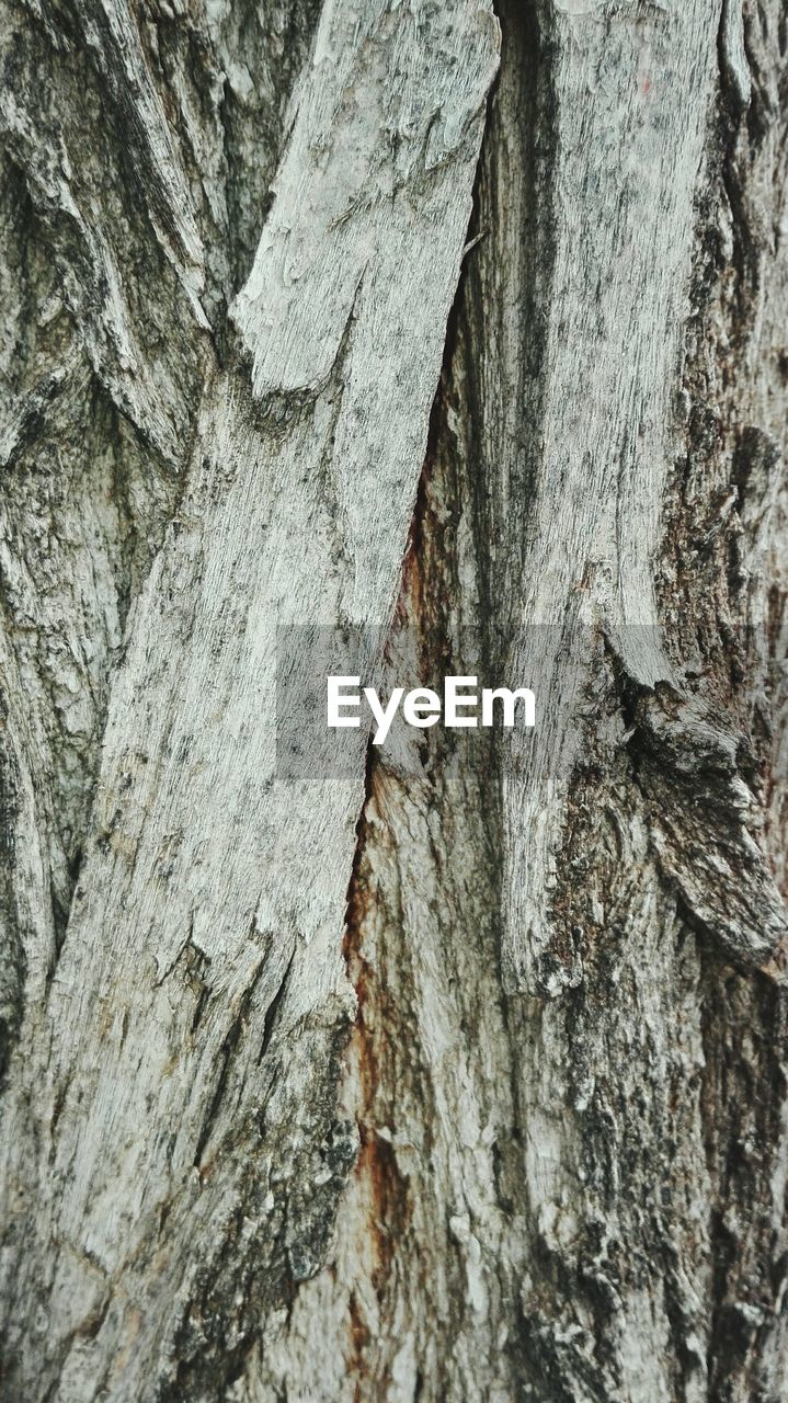 textured, backgrounds, rough, full frame, close-up, tree trunk, no people, weathered, wood - material, pattern, day, outdoors, tree, nature