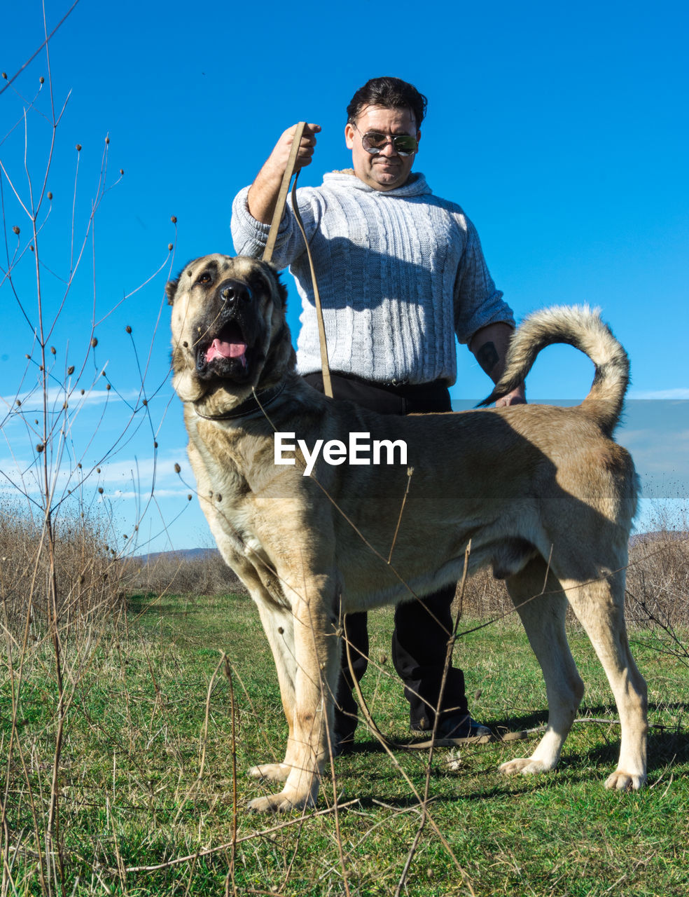 Man with dog standing on field against sky