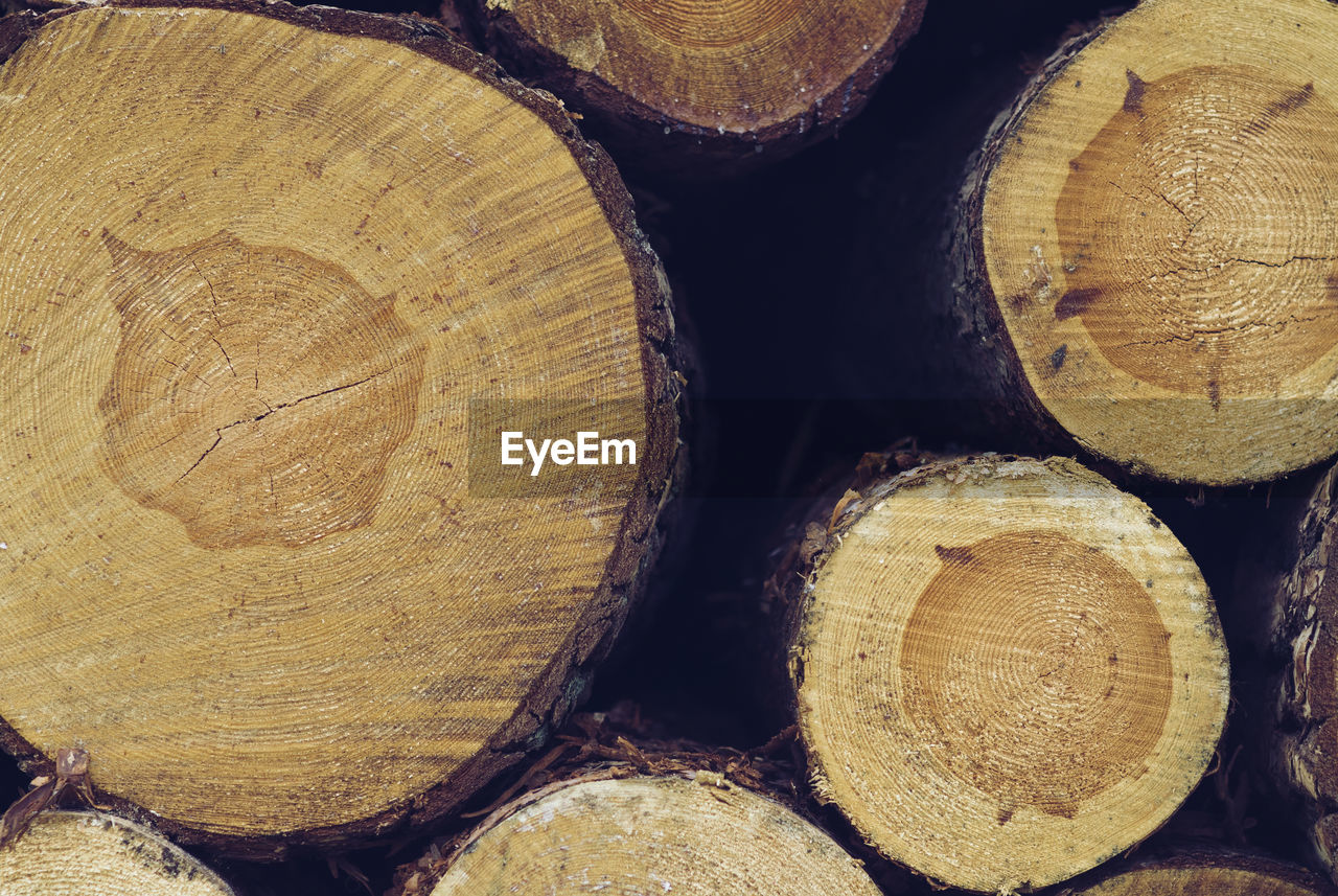 log, firewood, timber, stack, woodpile, forestry industry, wood, wood - material, textured, full frame, backgrounds, deforestation, heap, lumber industry, tree ring, close-up, no people, day