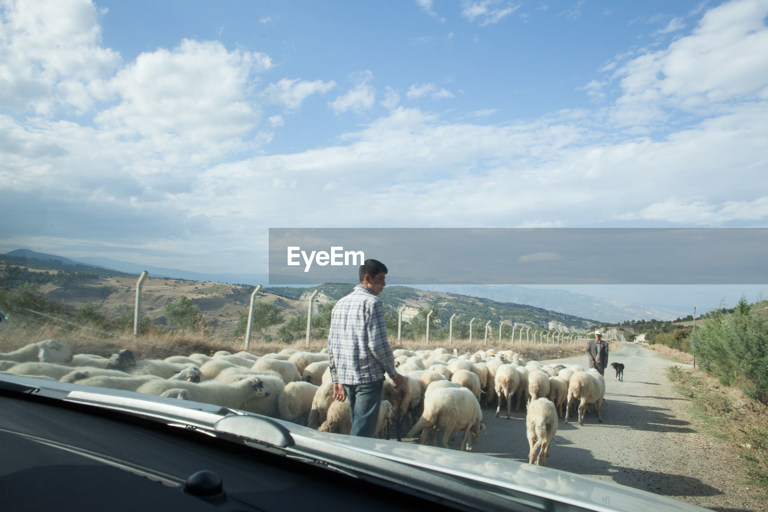 transportation, sky, road, landscape, cloud - sky, mountain, land vehicle, full length, cloud, rear view, animal themes, lifestyles, mode of transport, car, day, casual clothing, nature, standing