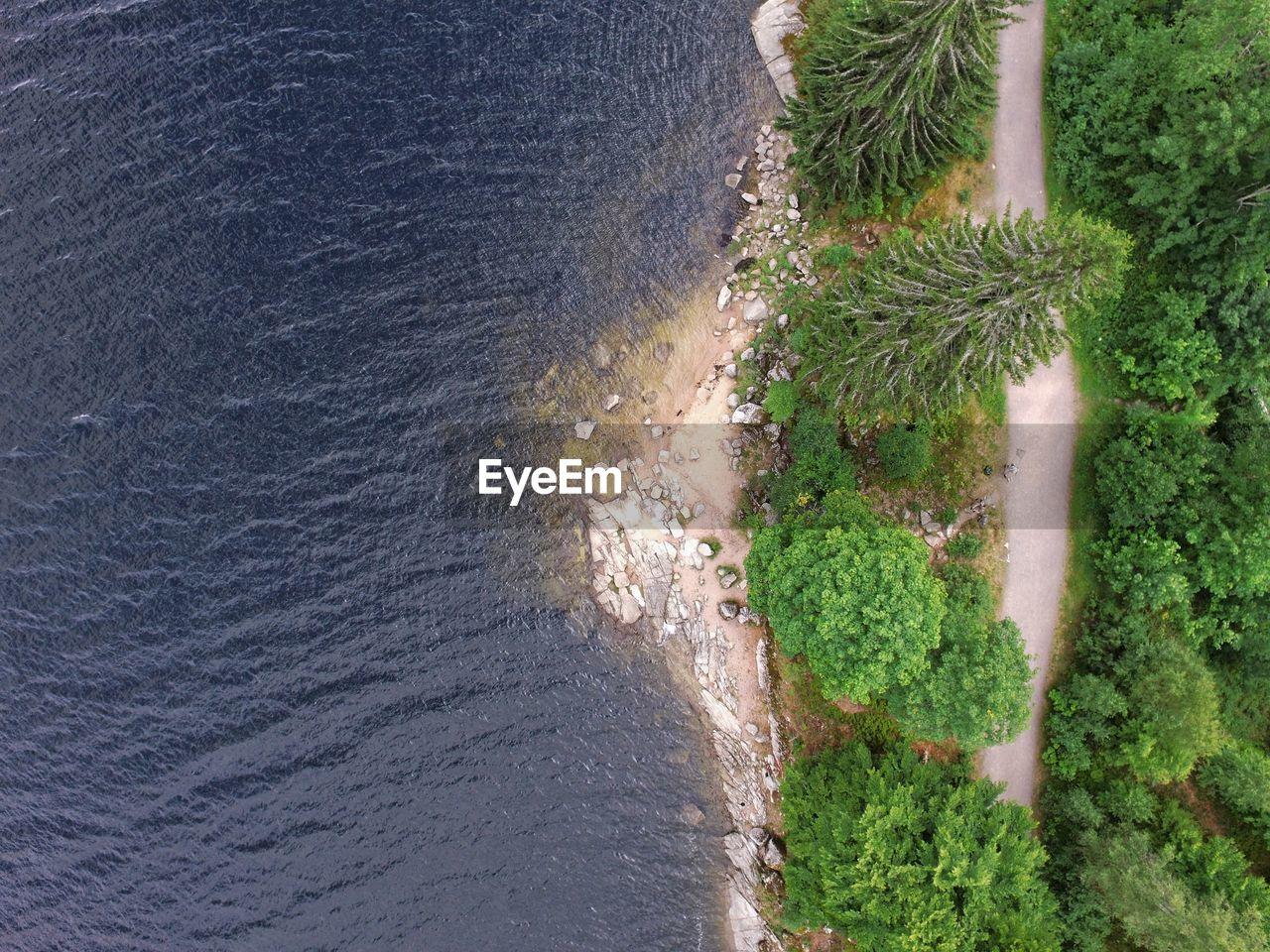 HIGH ANGLE VIEW OF TREES AND SEA
