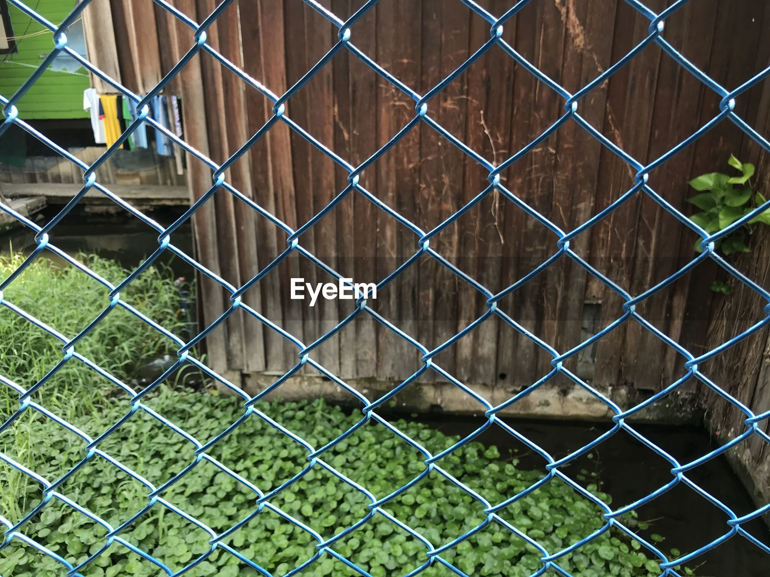 FULL FRAME SHOT OF CHAINLINK FENCE WITH GRASS