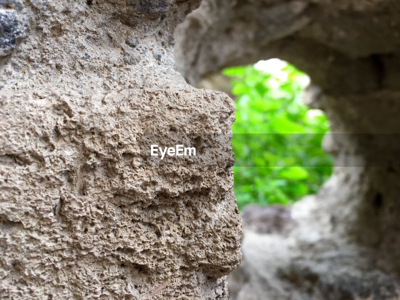 textured, day, rock - object, no people, nature, focus on foreground, rough, close-up, outdoors, tree trunk, beauty in nature