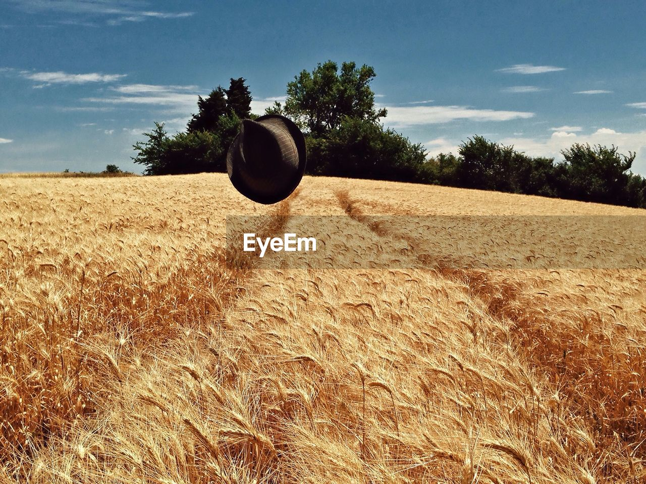 Hat above wheat field against sky
