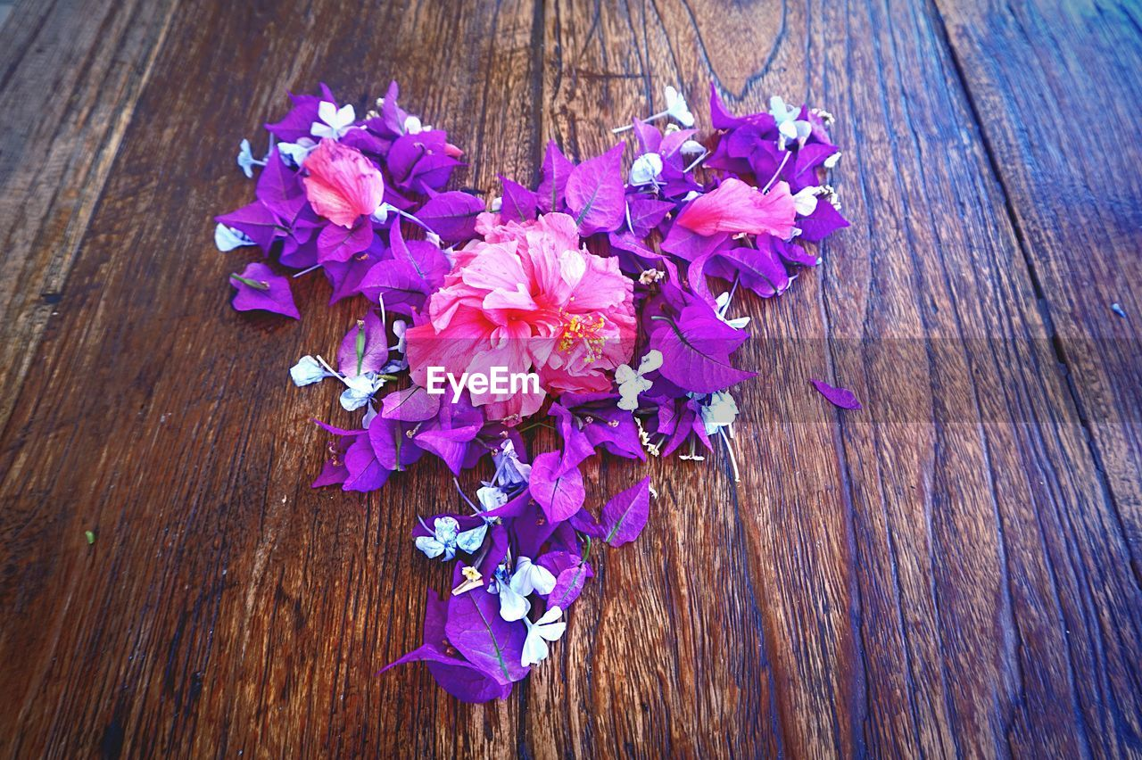 flower, wood - material, purple, petal, fragility, high angle view, no people, growth, pink color, nature, indoors, blooming, close-up, day, beauty in nature, freshness, flower head