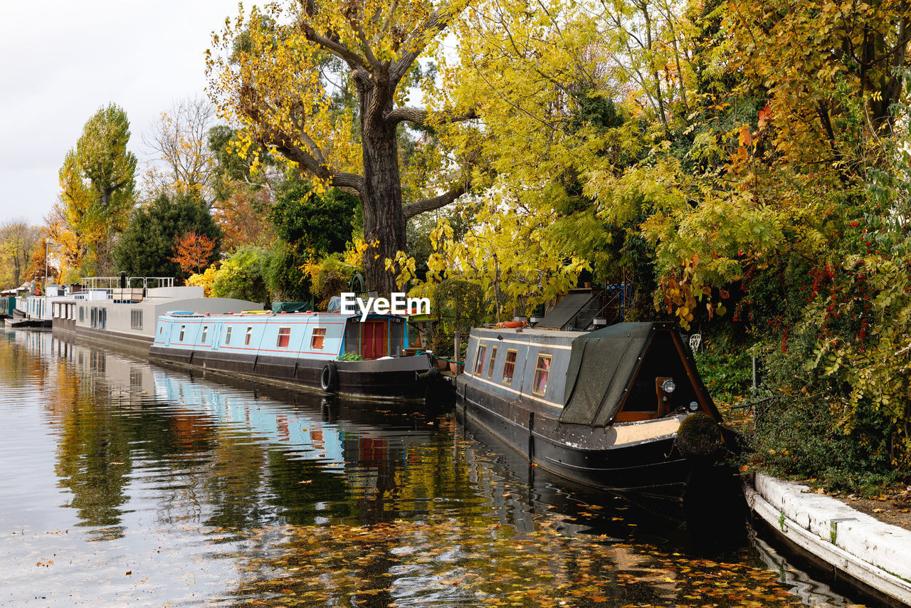 tree, water, nautical vessel, mode of transportation, transportation, plant, nature, autumn, waterfront, day, reflection, growth, change, no people, river, beauty in nature, outdoors, tranquility, passenger craft