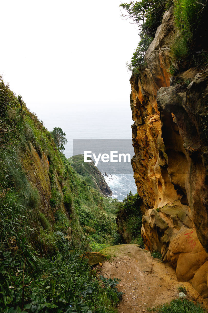 plant, beauty in nature, rock, sky, tranquility, water, tranquil scene, nature, sea, rock - object, scenics - nature, day, tree, land, solid, no people, rock formation, cliff, mountain, outdoors, formation
