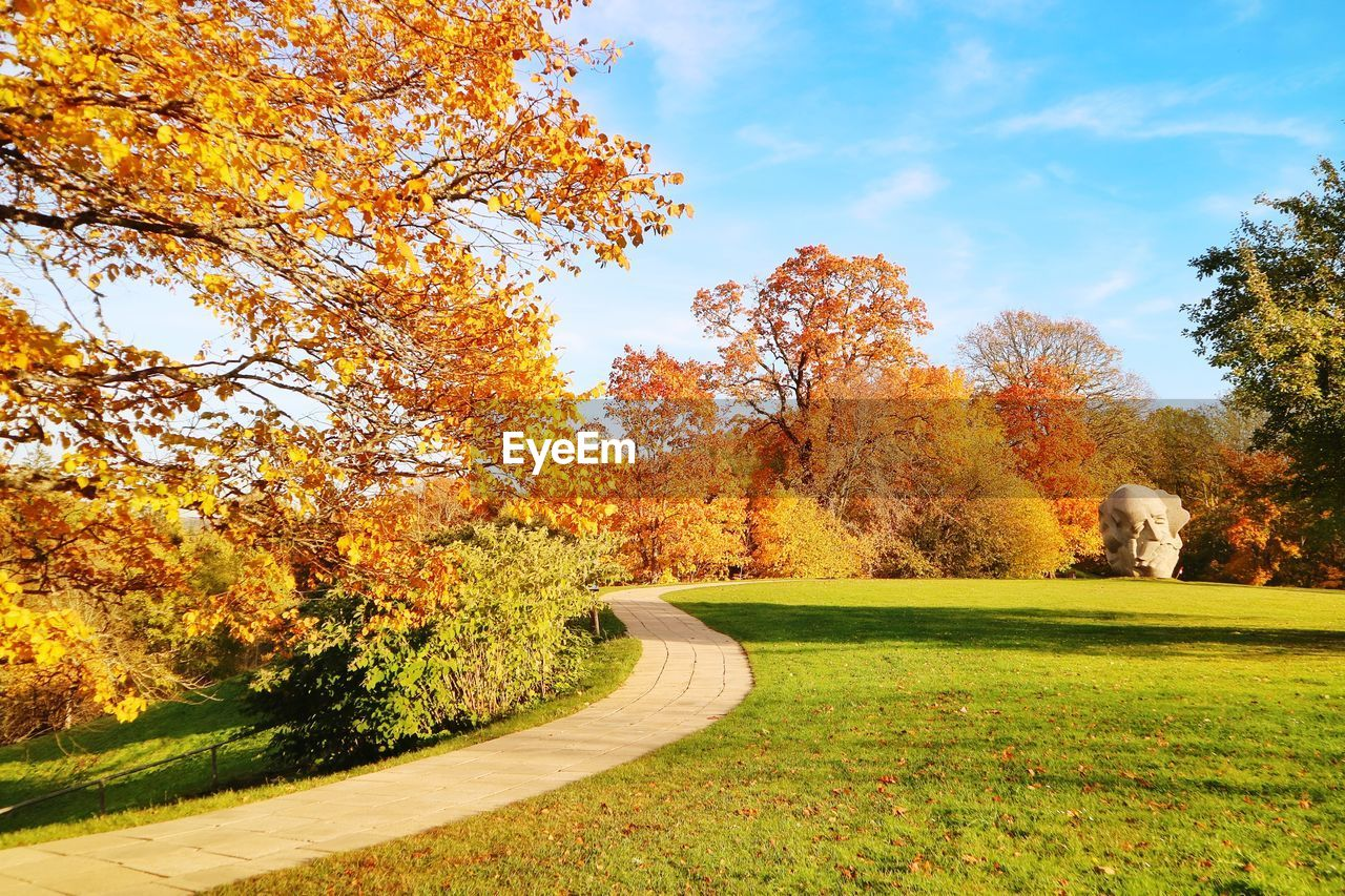 plant, tree, autumn, change, nature, beauty in nature, sky, tranquility, day, growth, orange color, tranquil scene, grass, park, no people, green color, land, leaf, park - man made space, scenics - nature, outdoors, fall, autumn collection