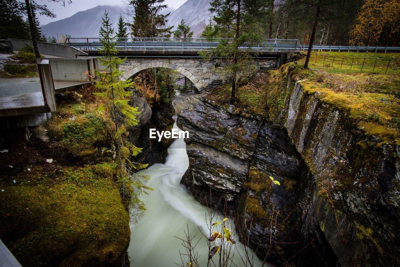 Bridge over stream by trees