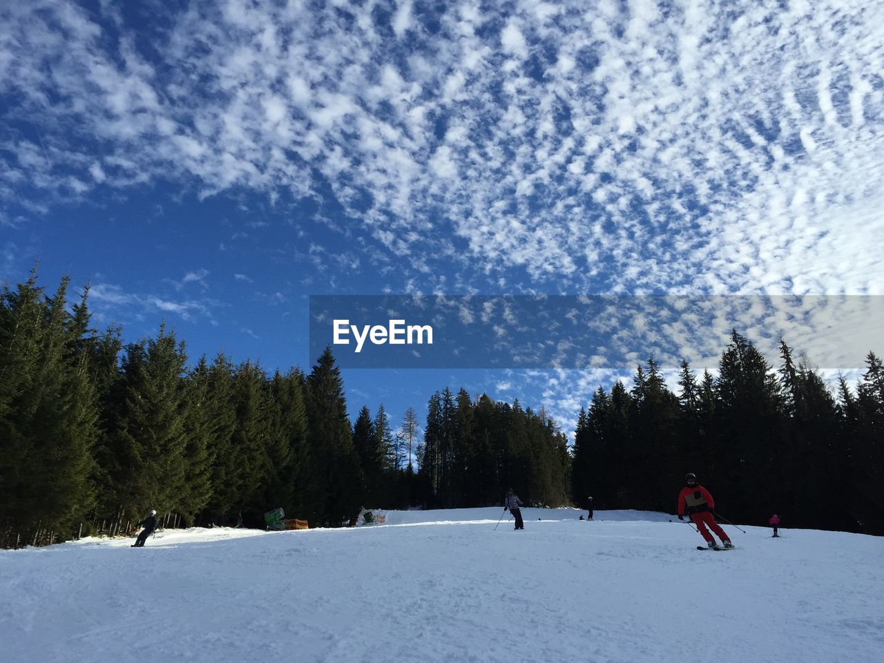 snow, winter, cold temperature, tree, nature, sky, activity, adventure, leisure activity, sport, two people, beauty in nature, men, ski holiday, full length, outdoors, real people, snowboarding, extreme sports, friendship, day, warm clothing, people