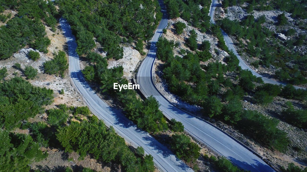 high angle view, plant, road, tree, transportation, day, nature, curve, scenics - nature, aerial view, highway, city, growth, mountain road, beauty in nature, connection, winding road, street, outdoors, no people