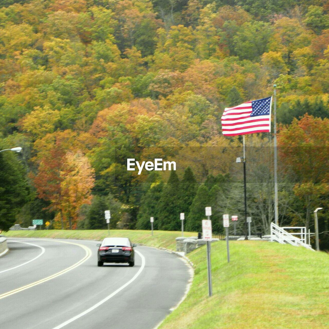 flag, tree, road, car, patriotism, transportation, outdoors, day, nature, no people, beauty in nature, sky