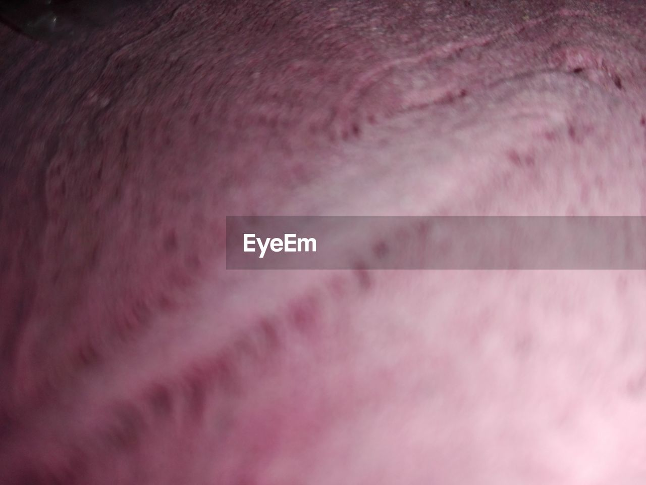 backgrounds, full frame, textured, no people, close-up, pink color, indoors, animal themes, fiber, day, mammal, nature